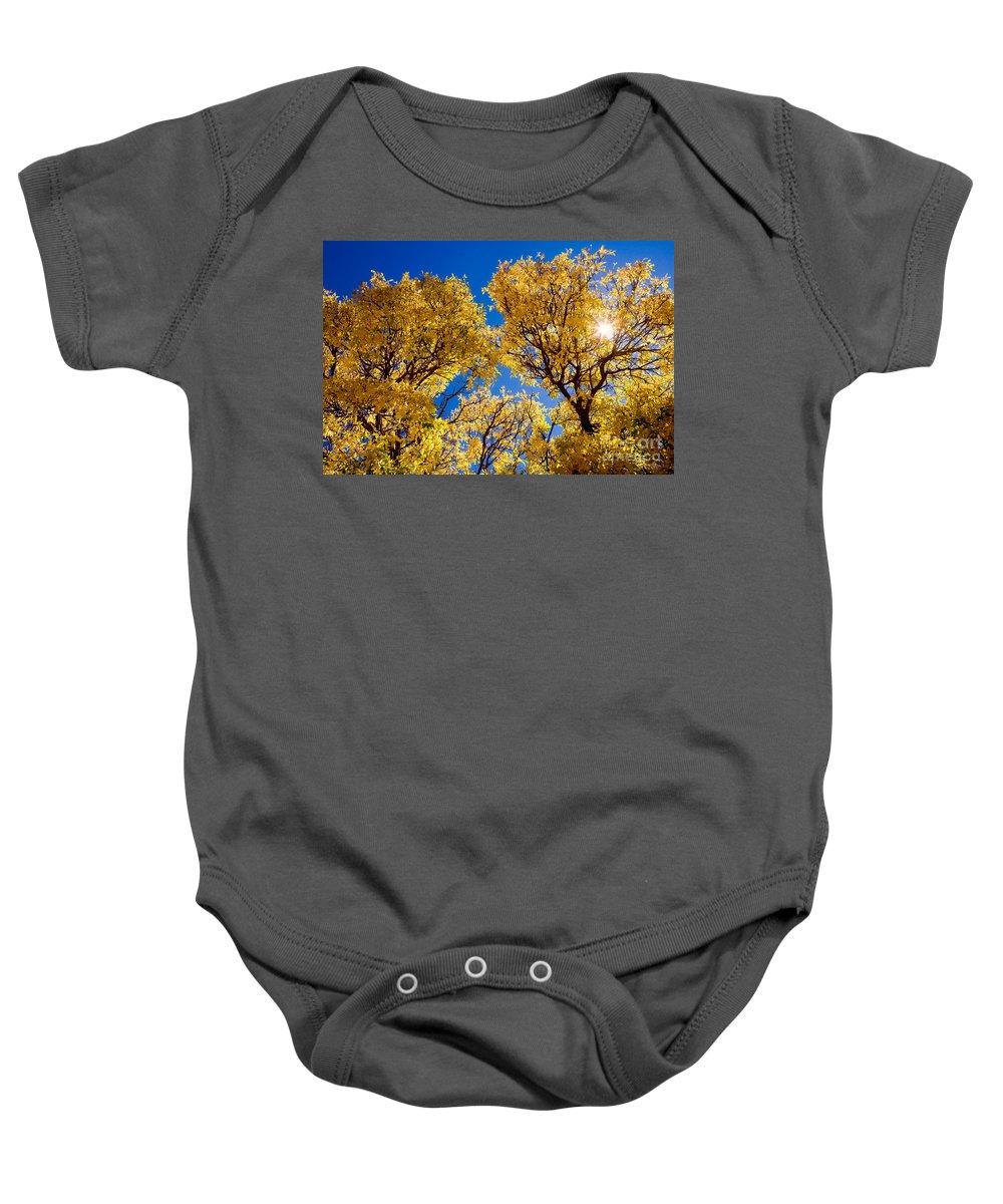 Leaves Baby Onesie featuring the photograph Fall Foliage Near Ruidoso Nm by Matt Suess