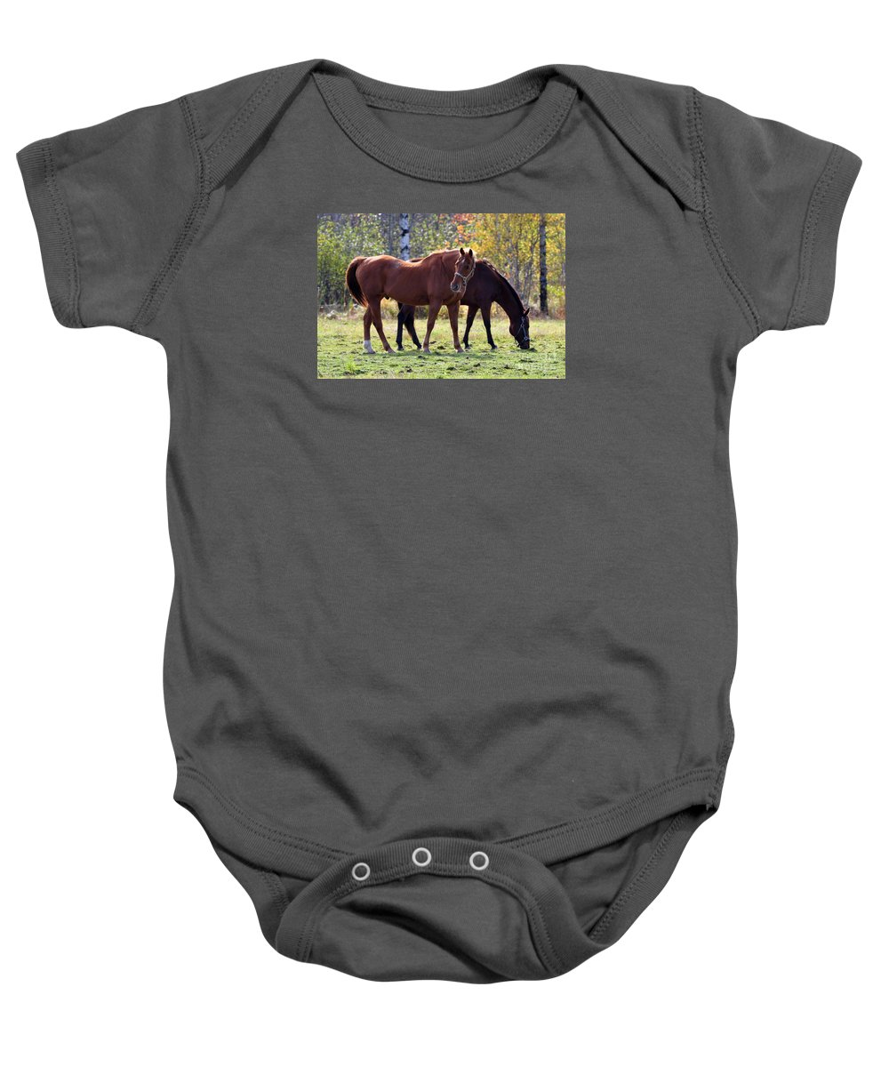 Horse Baby Onesie featuring the photograph Horses Fall Grazing by Glenn Gordon