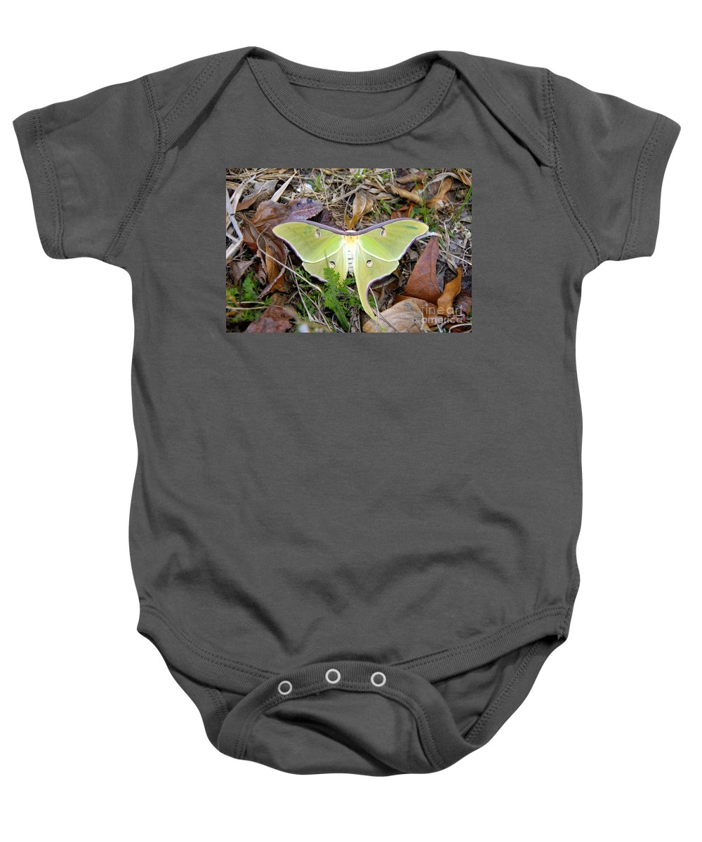 Moth Baby Onesie featuring the photograph Fallen Angel by David Lee Thompson