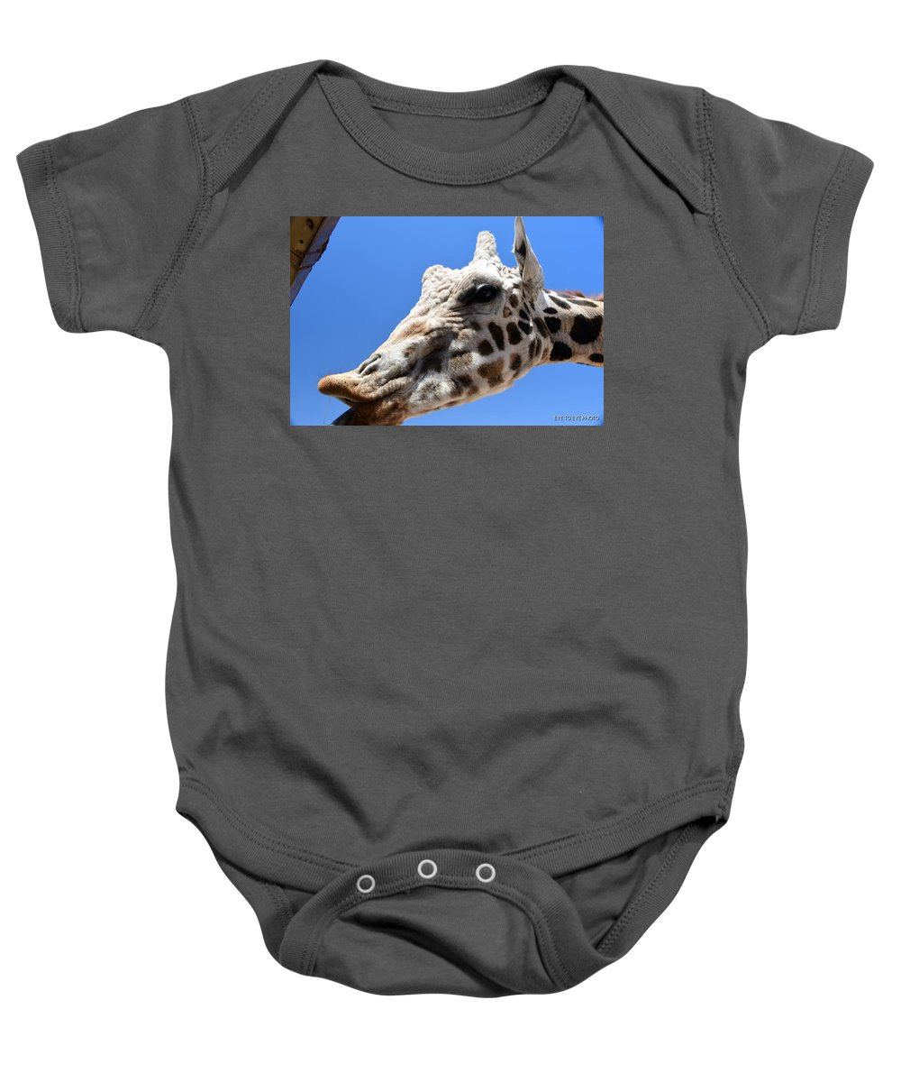 Giraffe Baby Onesie featuring the photograph Feed Me by Lyle Barker