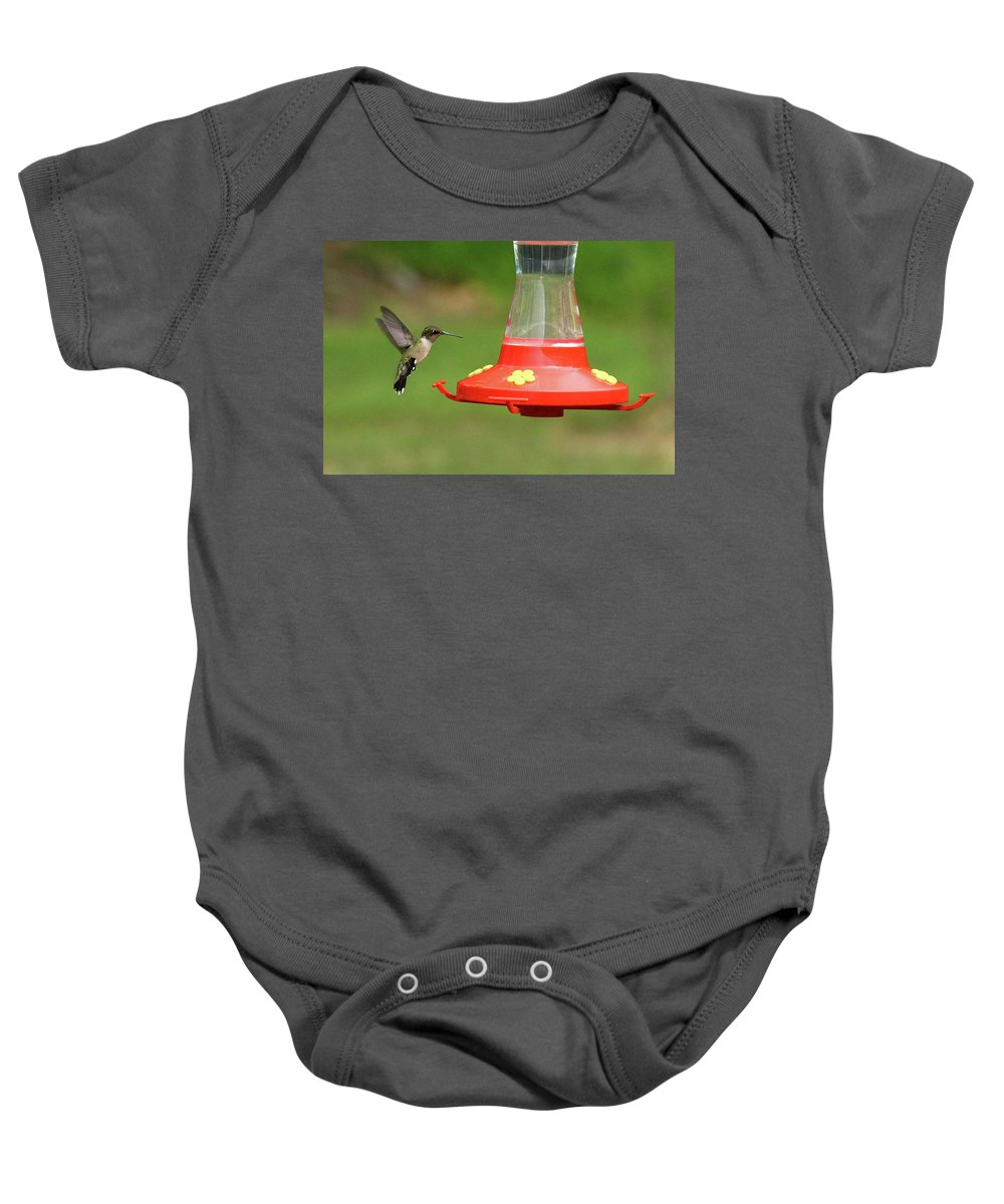Bird Baby Onesie featuring the photograph Feeding Time by Lou Ford
