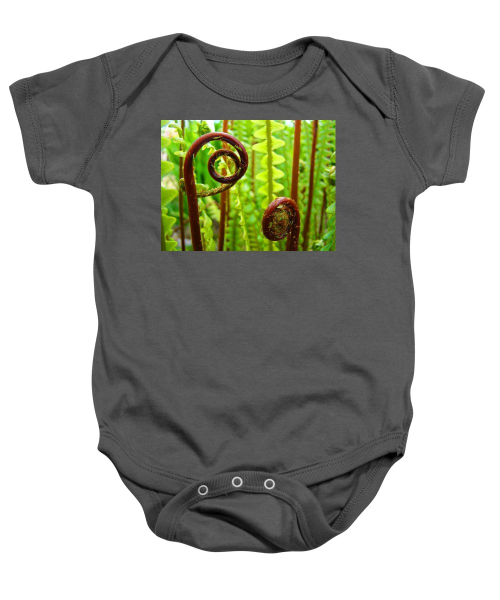 Fern Baby Onesie featuring the photograph Fern Fronds Fine Art Photography Forest Ferns Green Baslee Troutman by Baslee Troutman
