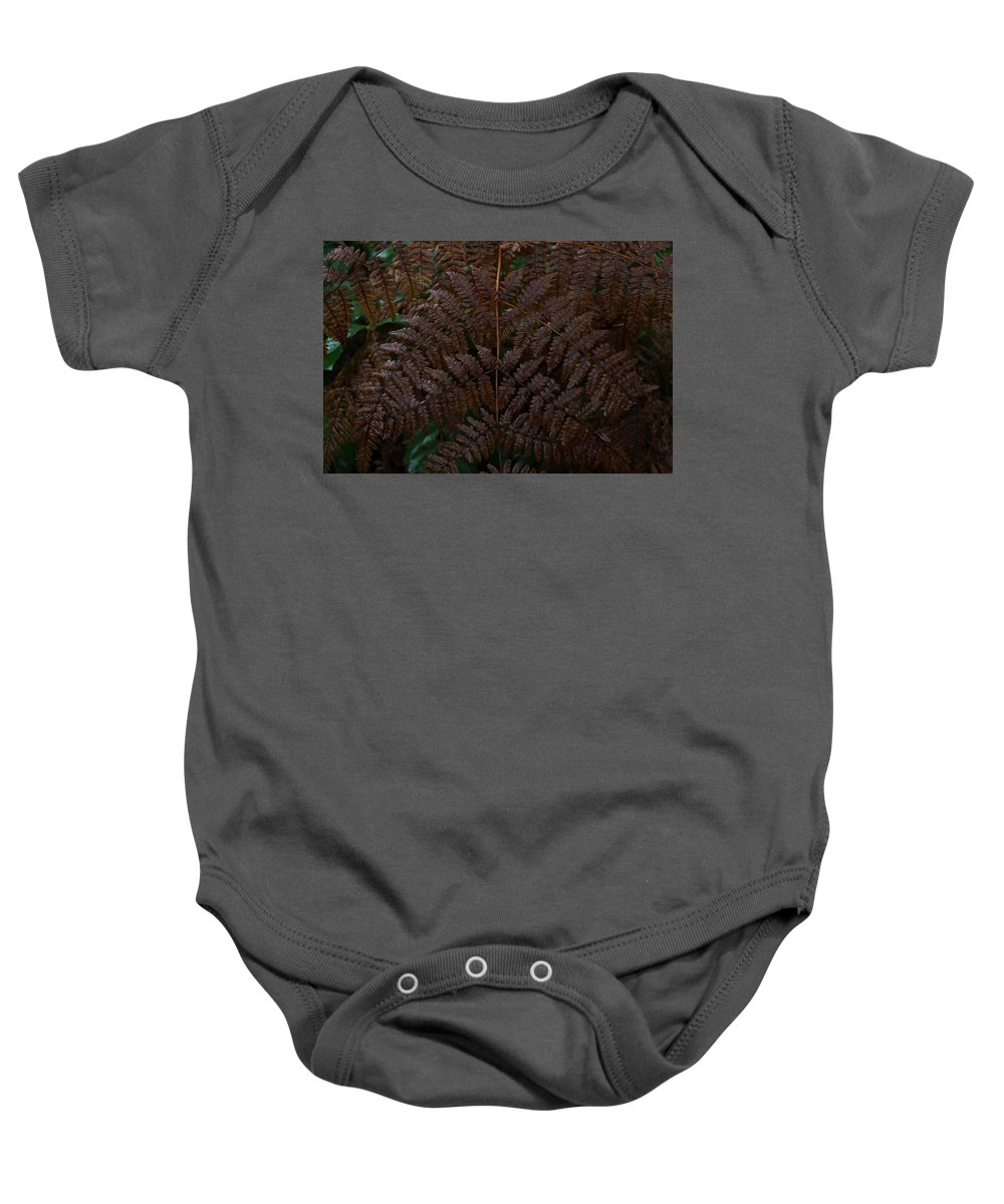 Fern Baby Onesie featuring the photograph Fern Kaleidescope by Dani Keating