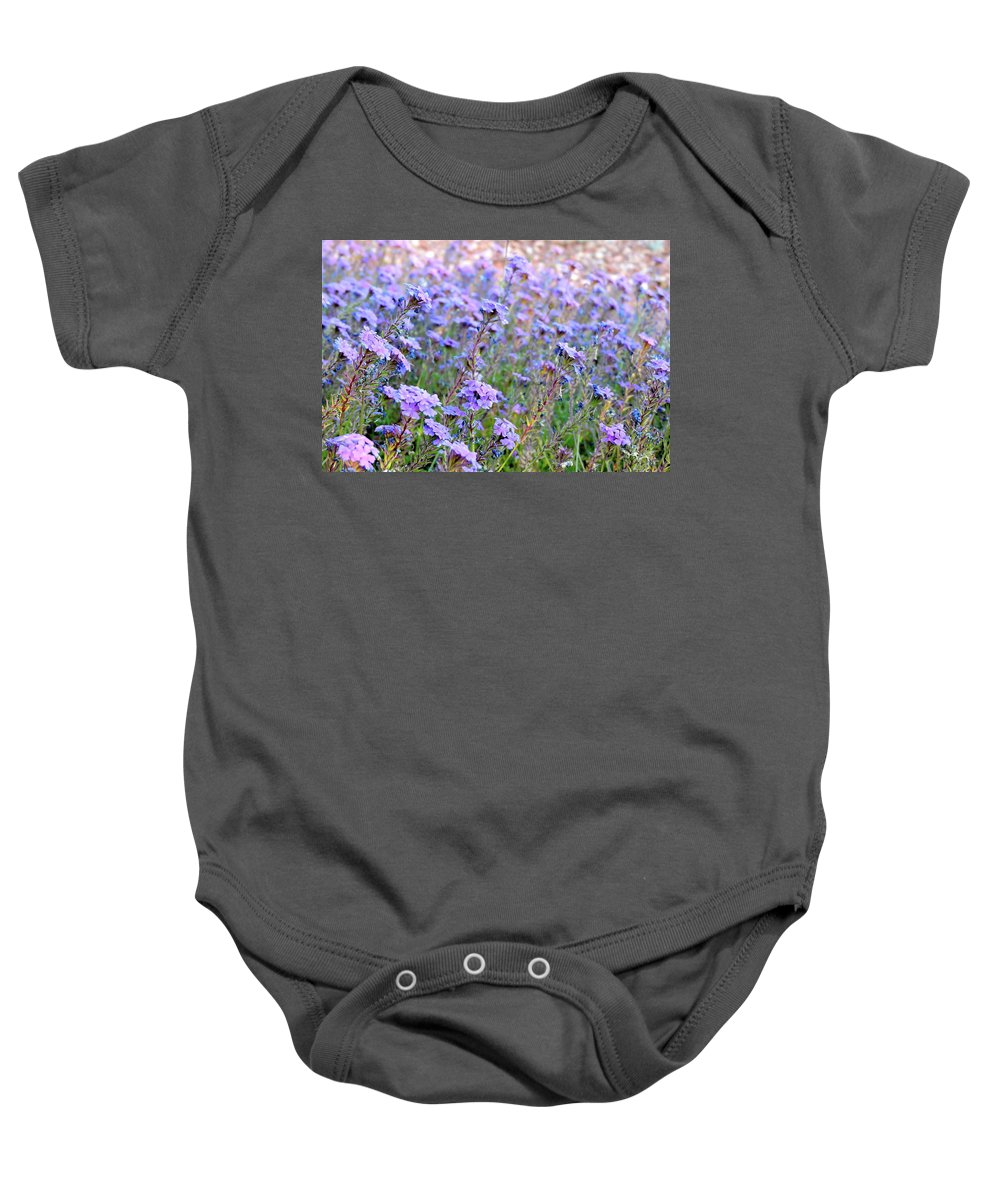 Lavendar Flowers. Little Flowers Baby Onesie featuring the photograph Field Of Lavendar by Patricia Haynes