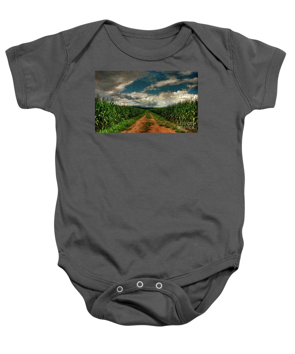Summer Baby Onesie featuring the photograph Fields Of Summer by Lois Bryan
