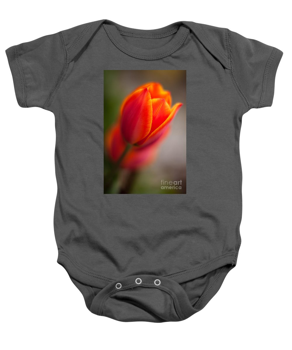 Tulip Baby Onesie featuring the photograph Fiery Tulip by Mike Reid