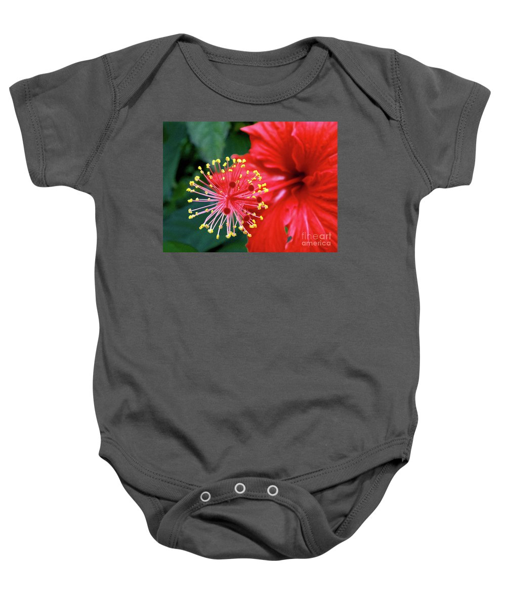Photography Baby Onesie featuring the photograph Fireworks - Hibiscus by Kaye Menner