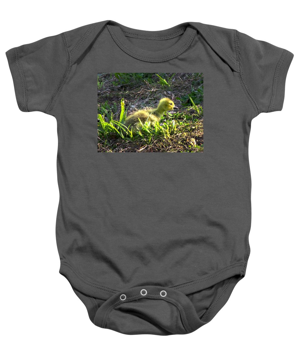 Gosling Baby Onesie featuring the photograph First Sunset by Craig Bohnert