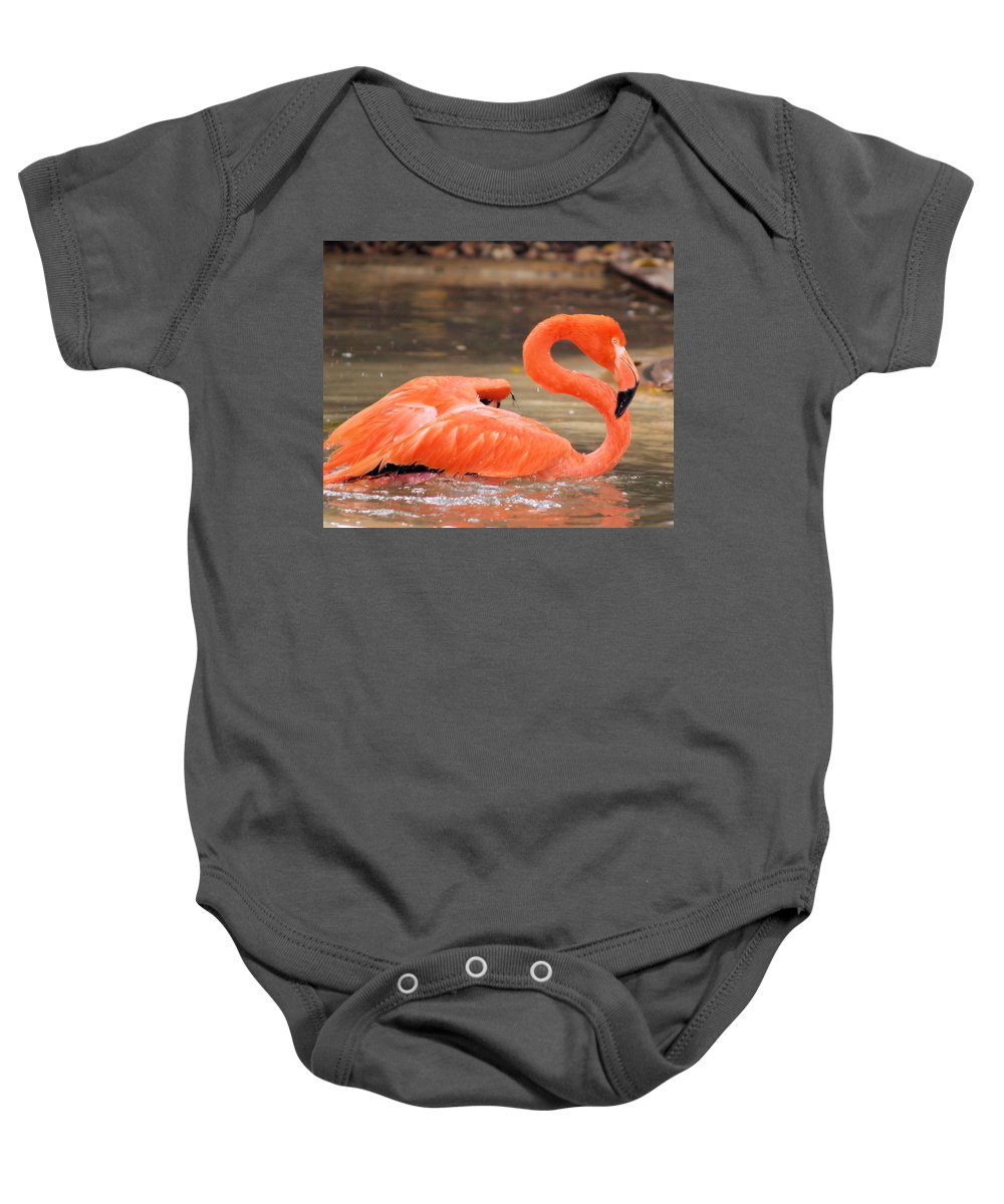 Flamingo Baby Onesie featuring the photograph Flamingo by Gaby Swanson