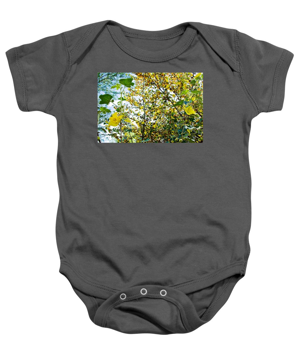 California Glory At Pilgrim Place In Claremont Baby Onesie featuring the photograph California Glory At Pilgrim Place In Claremont-california by Ruth Hager