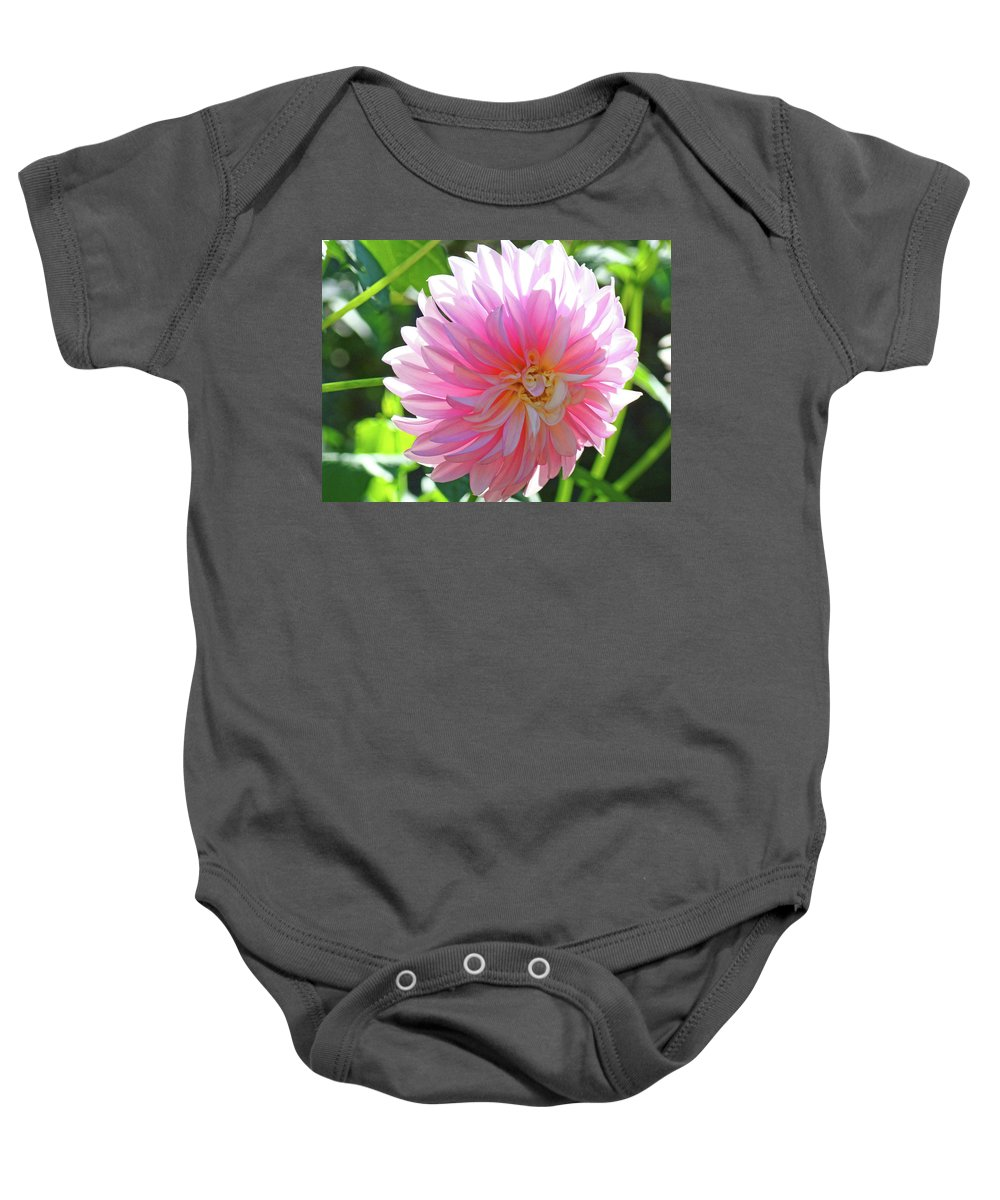 Dahlia Baby Onesie featuring the photograph Floral Art Prints Pink Dahlias Sunlit Baslee Troutman by Baslee Troutman