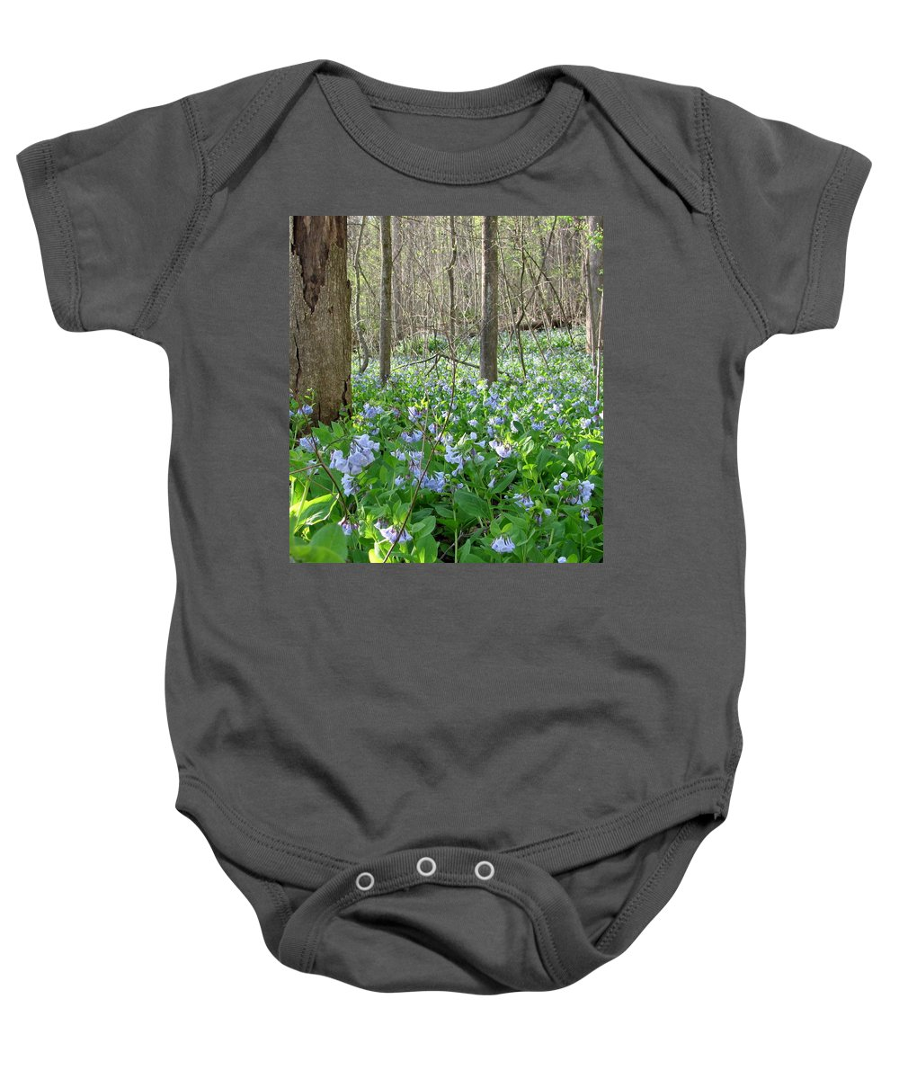 Virginia Blue Bell Images Virginia Blue Bell Prints Forest Flora Photos Forest Flower Prints Gunpowder Park Maryland Wild Spring Flowers Prints Floral Forest Floor Images American Flowers Midatlantic Flora Botany Native Plants Native Flora Wild Flowers Forest Flowers Wild Blue Flowers Pics Gunpowder River Forest Buffer Vegetation Forest Color Spring Color Forest Decoration Biodiversity Forest Ecology Old Growth Forest Preservation Nature Conservation Baby Onesie featuring the photograph Floral Forest Floor by Joshua Bales