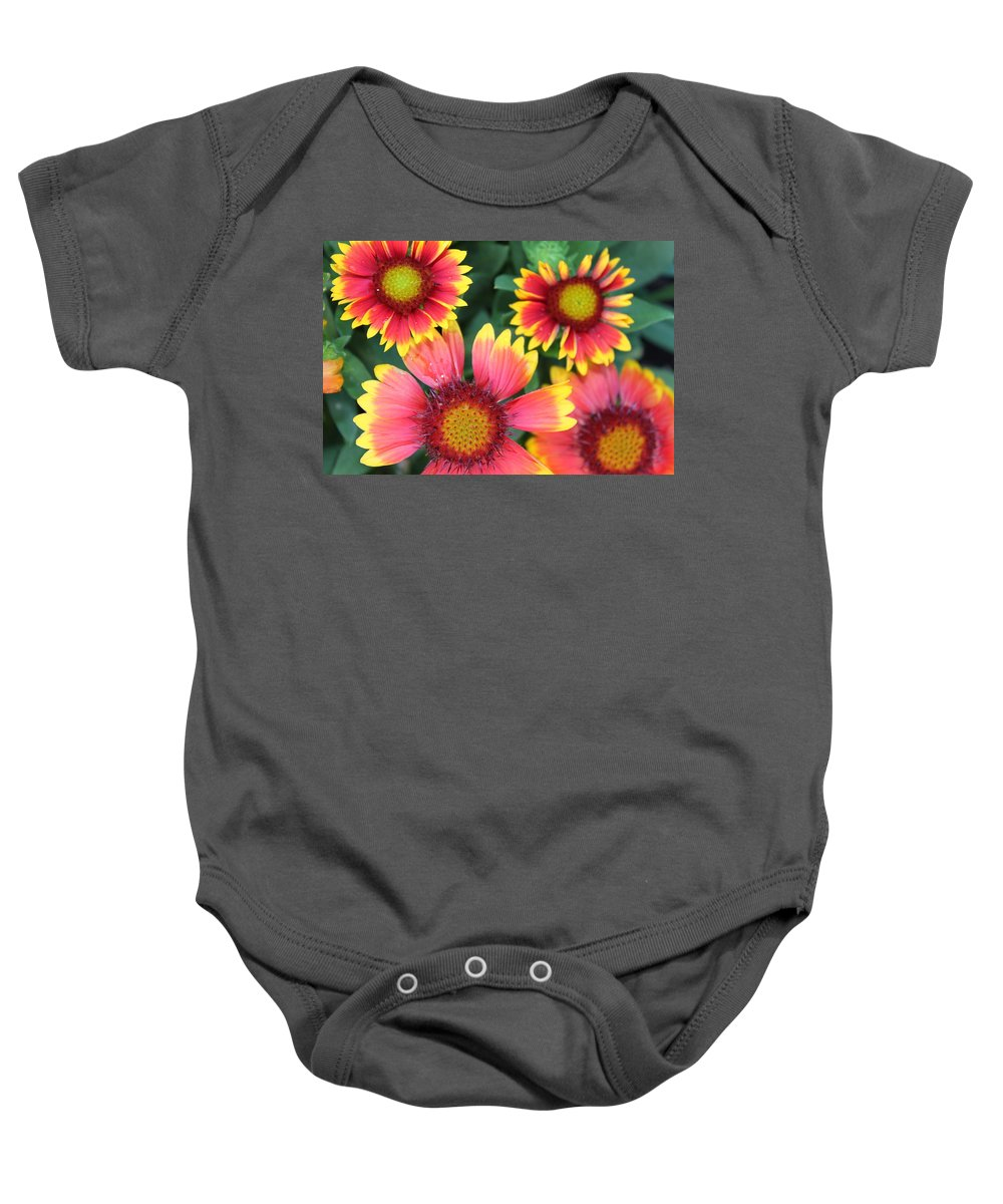 Flower Baby Onesie featuring the photograph Flower Burst by Lauri Novak
