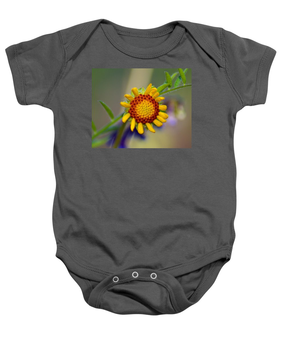 Flowers Baby Onesie featuring the photograph Flower Power by Ben Upham III