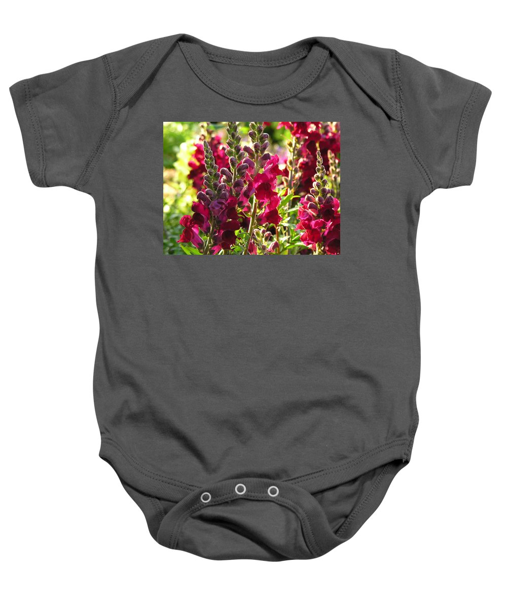Flowers Baby Onesie featuring the photograph Flowers by Diane Greco-Lesser