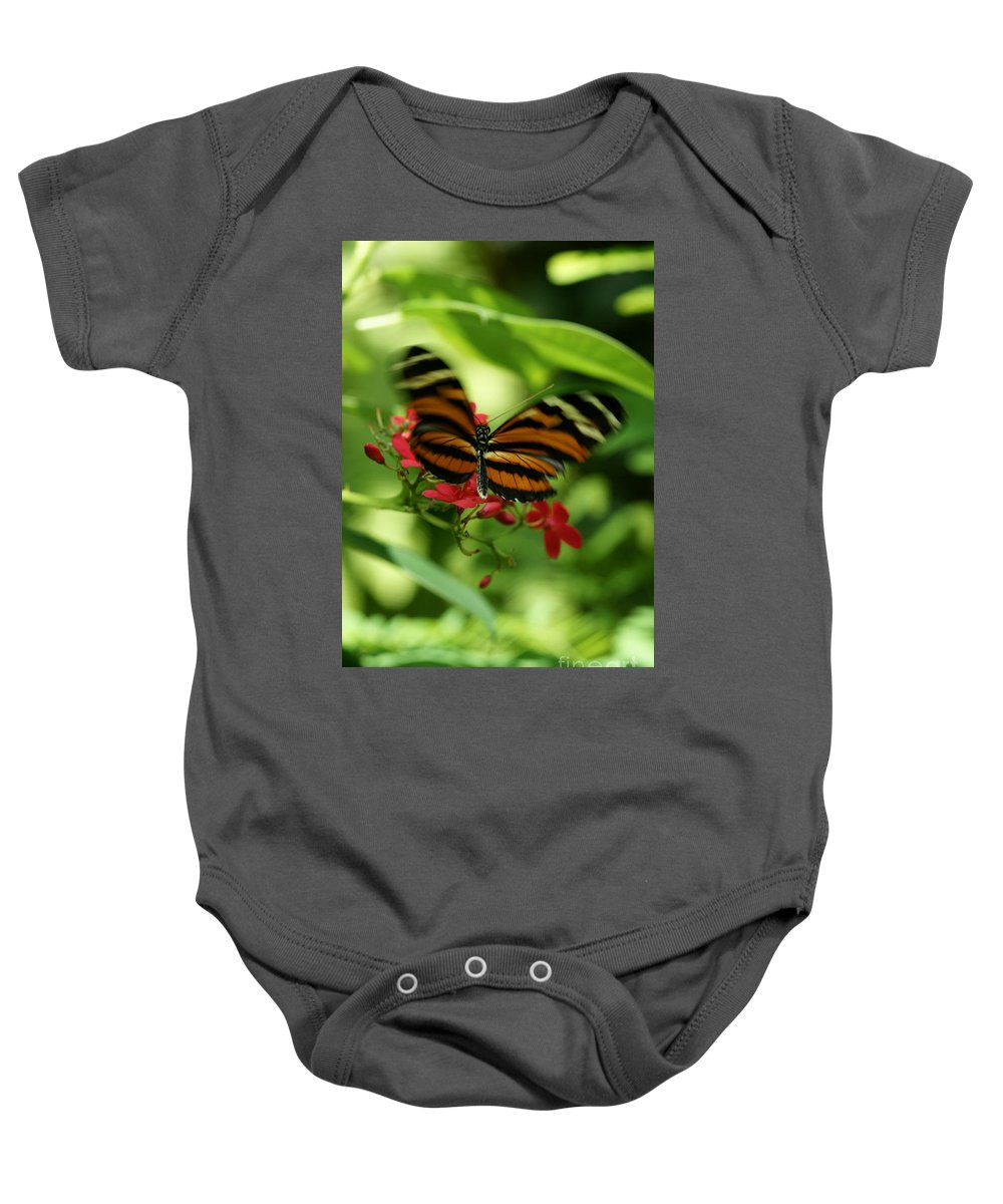 Butterfly Baby Onesie featuring the photograph Flutterby by Linda Shafer