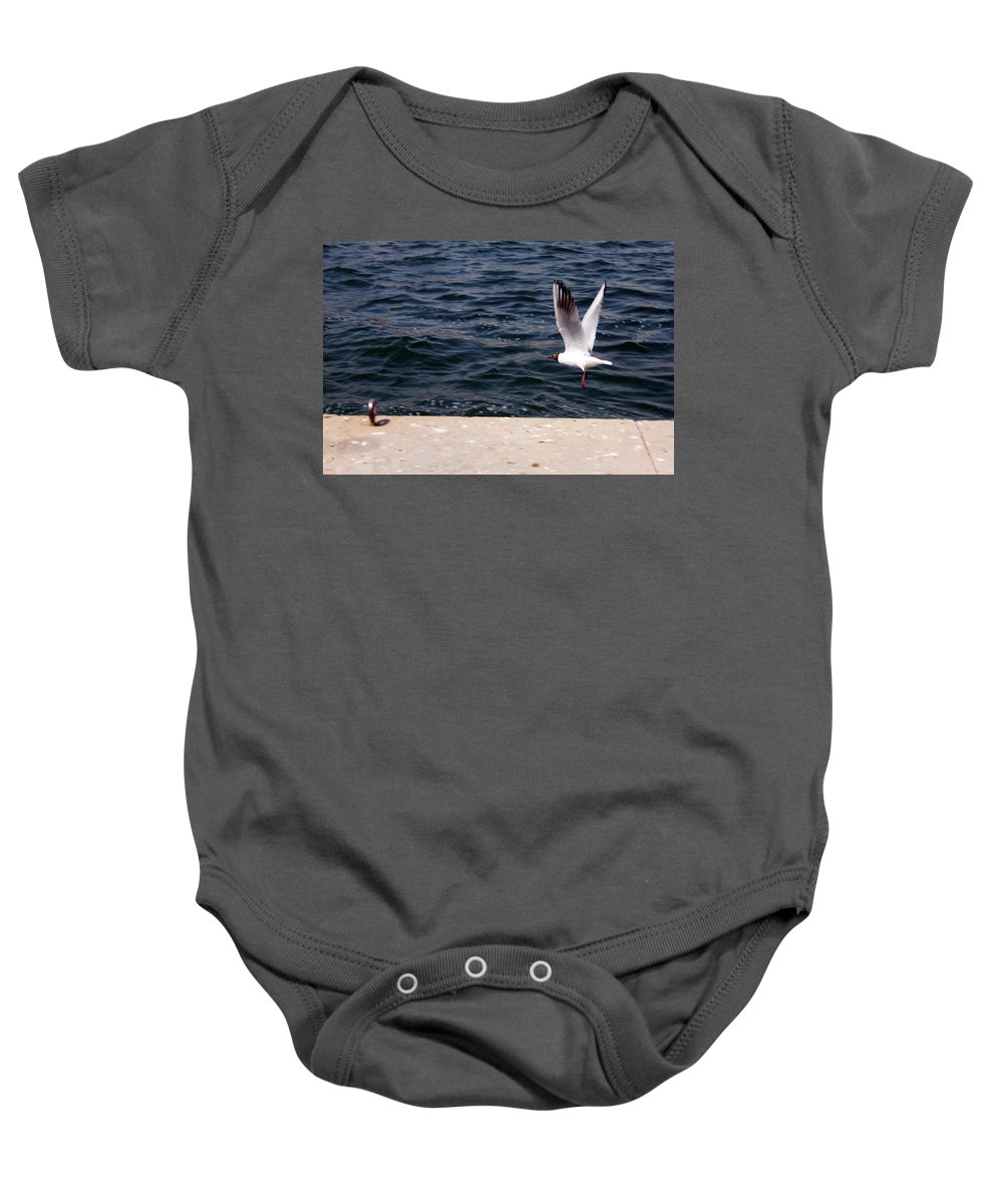 Uae Baby Onesie featuring the photograph Flying Free by Munir Alawi