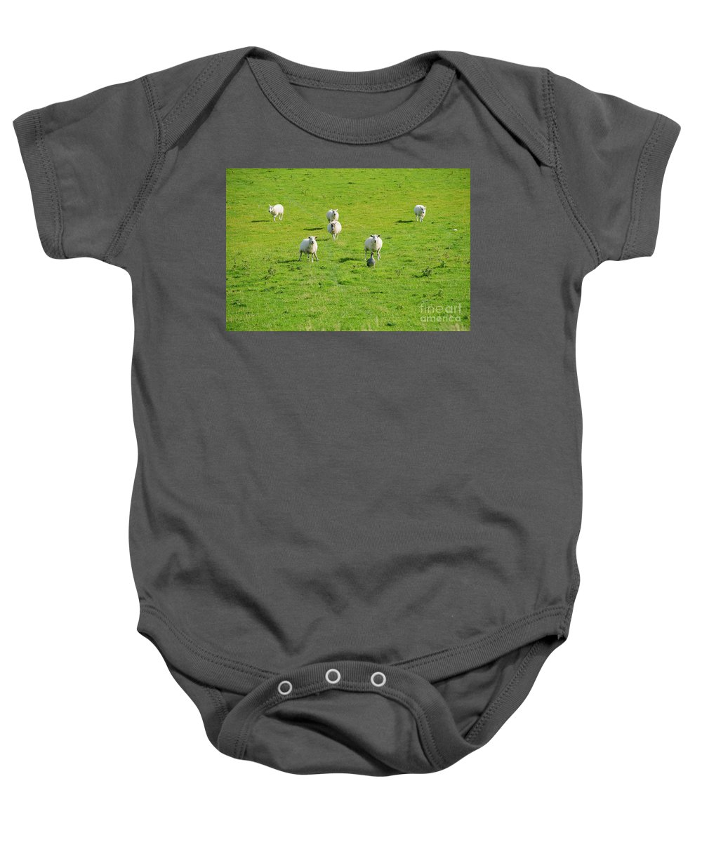 Isle Of Iona Baby Onesie featuring the photograph Following The Leader by Bob Phillips