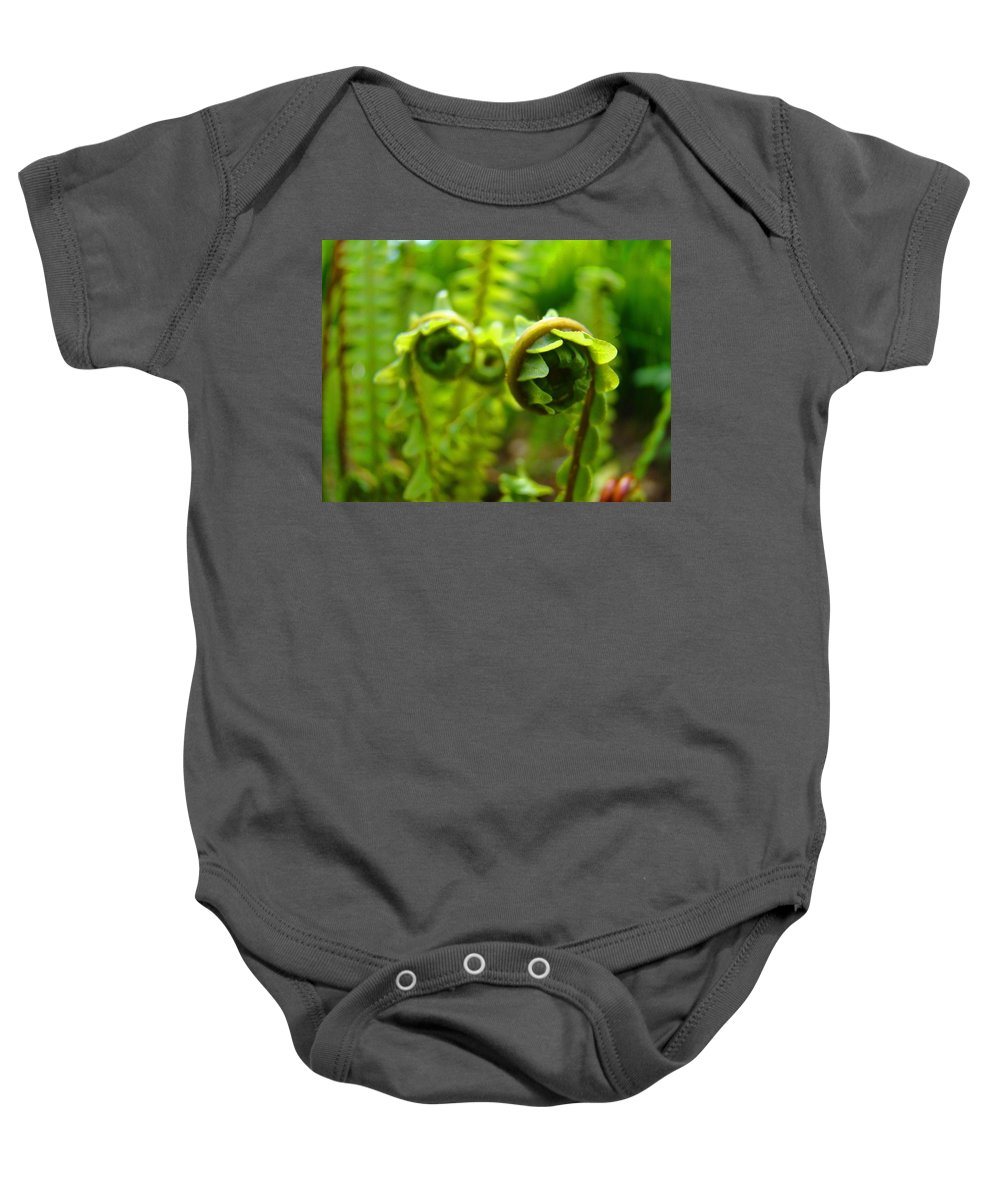 Fern Baby Onesie featuring the photograph Forest Ferns Fine Art Photography Art Prints Baslee Troutman by Baslee Troutman