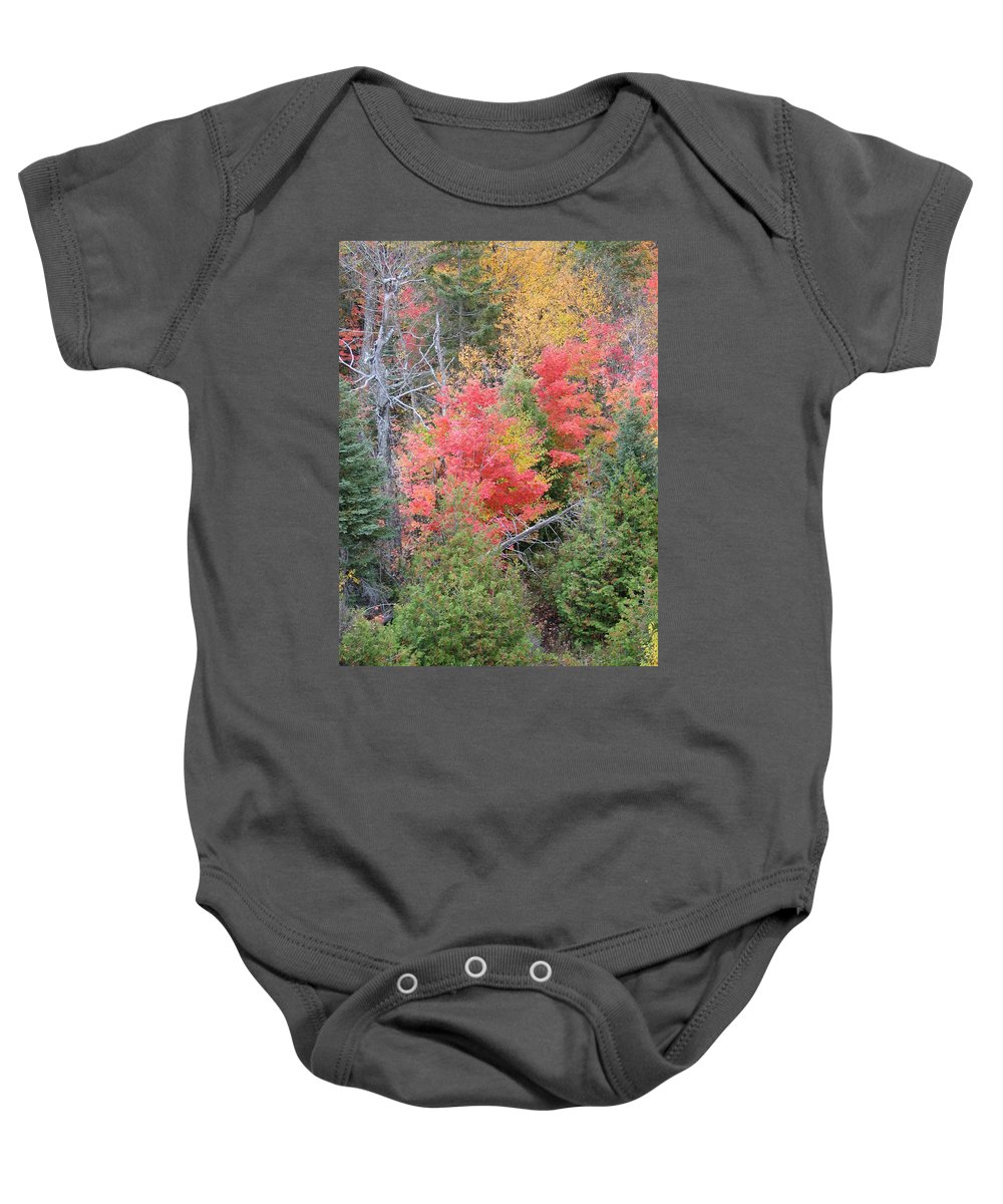 Fall Baby Onesie featuring the photograph Forest Fire by Kelly Mezzapelle