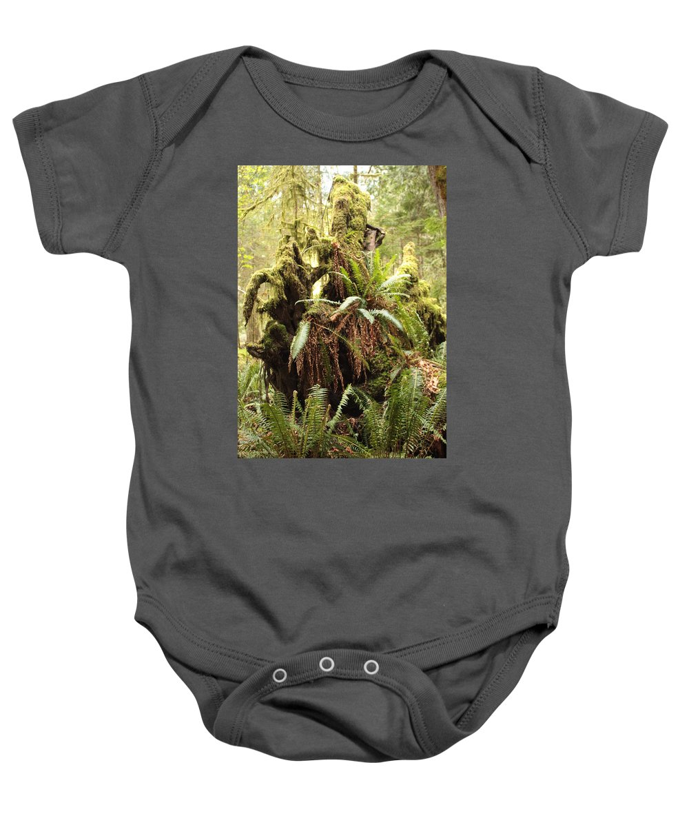 Rainforest Baby Onesie featuring the photograph Forest Revival by Carol Groenen