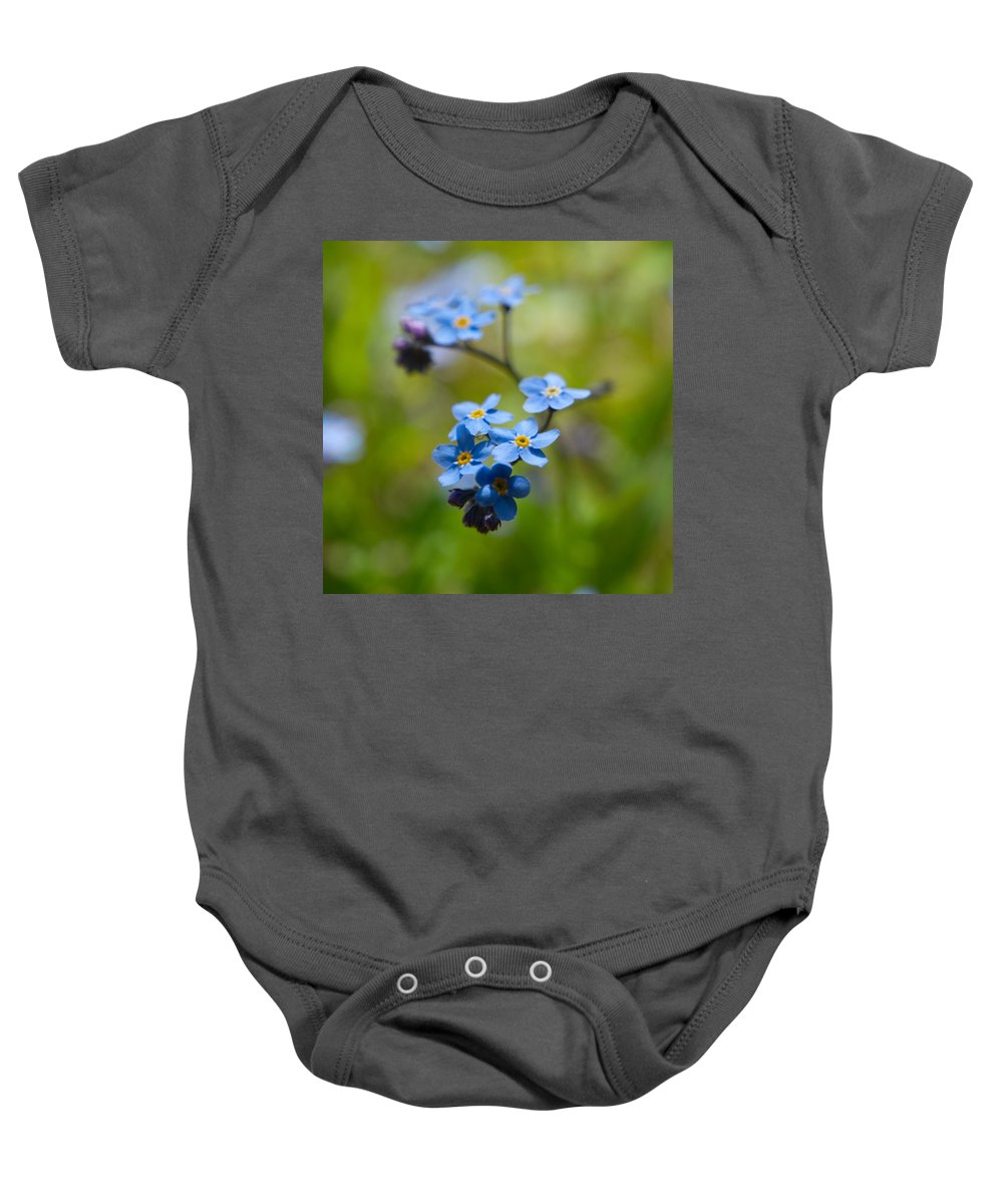 Lehtokukka Baby Onesie featuring the photograph Forget-me-not 1 by Jouko Lehto