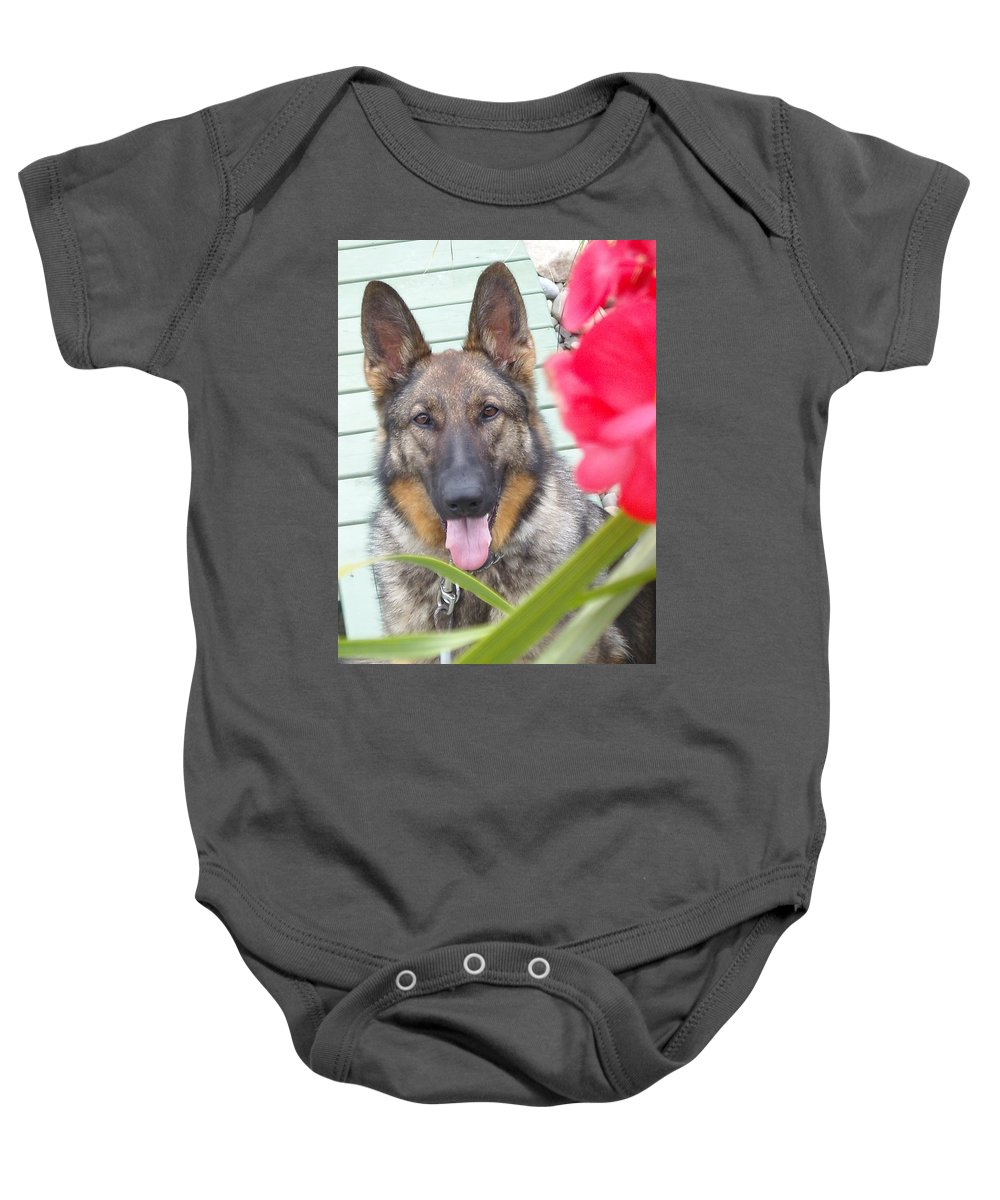 Dog Baby Onesie featuring the photograph Foxy by Line Gagne