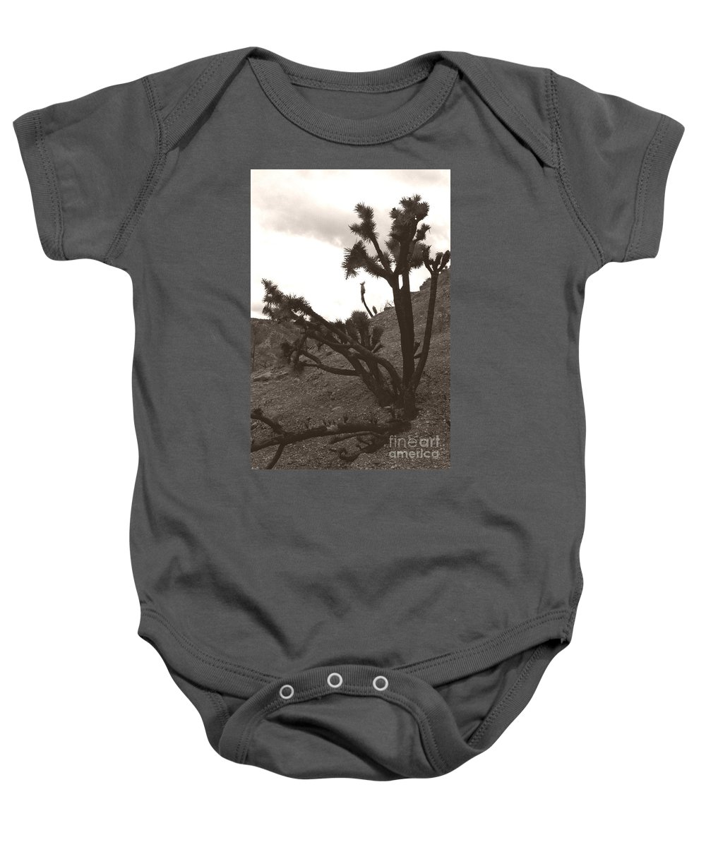 Baby Onesie featuring the photograph Framed By The Branches by Heather Kirk