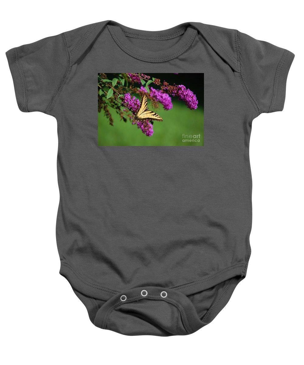 Butterfly Baby Onesie featuring the photograph Freedom by Debbi Granruth