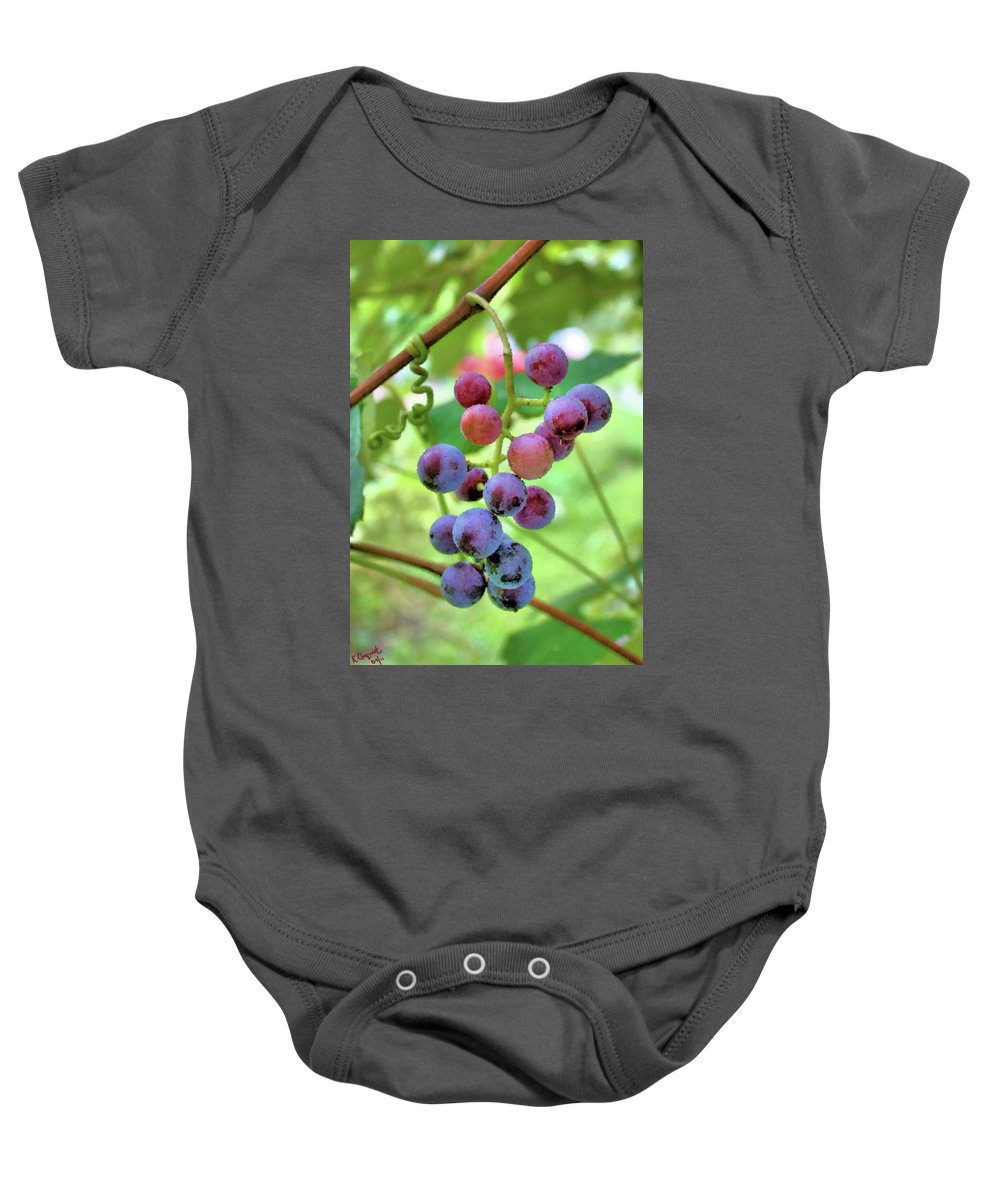Grapes Baby Onesie featuring the photograph Fruit Of The Vine by Kristin Elmquist