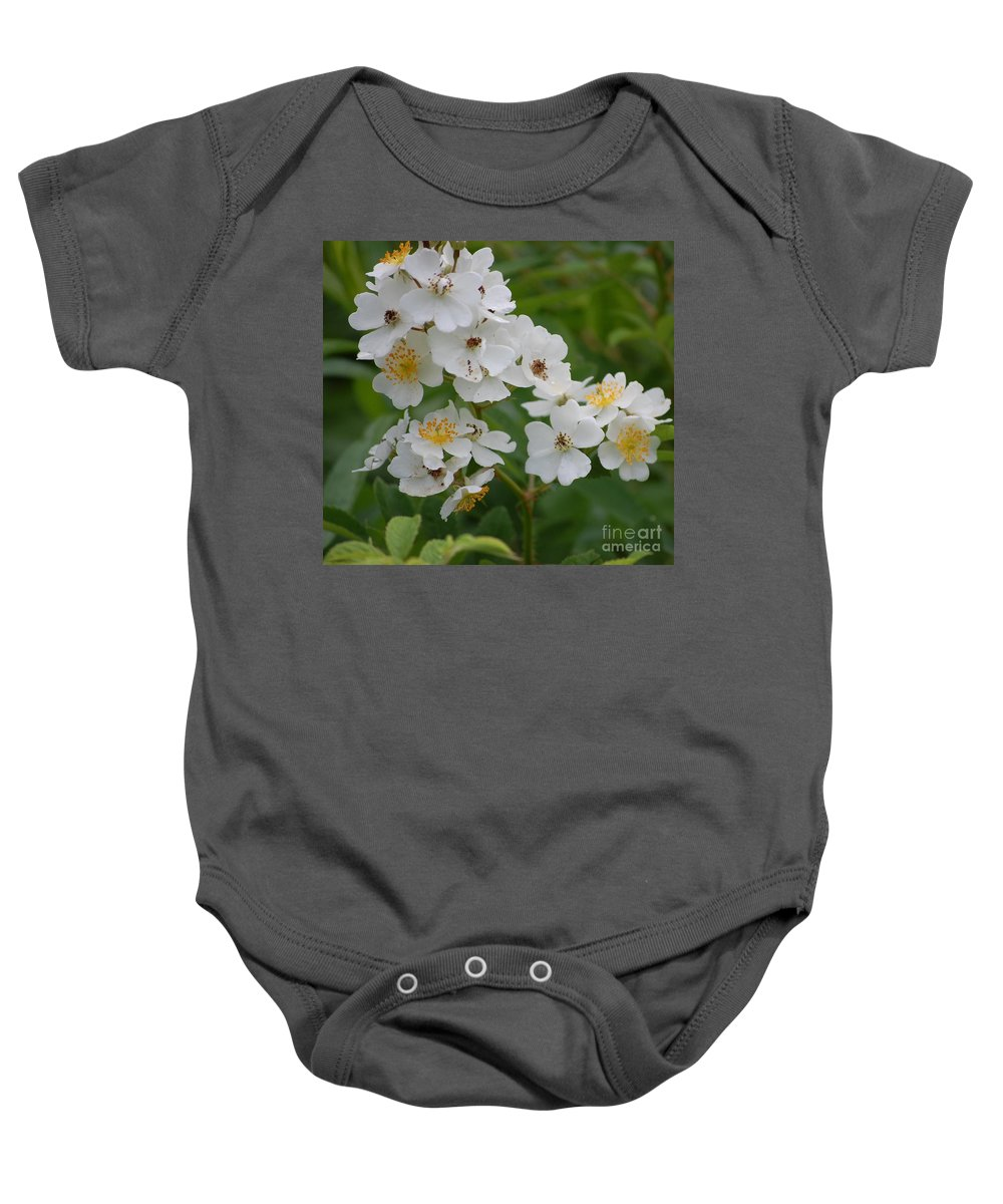 Baby Onesie featuring the photograph Fruity Potential by David Lane