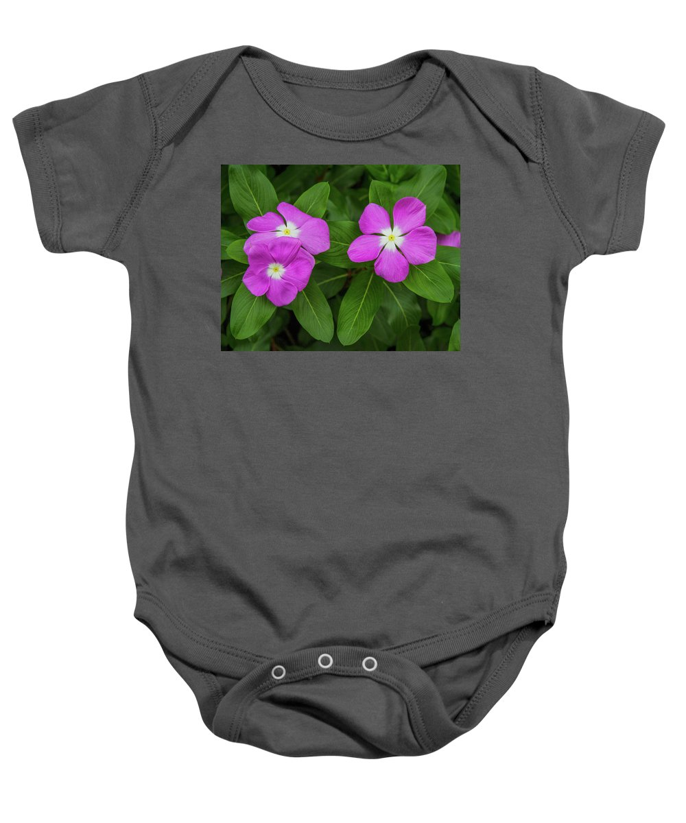 2014. Canon Baby Onesie featuring the photograph Garden Flowers by Mark Chandler