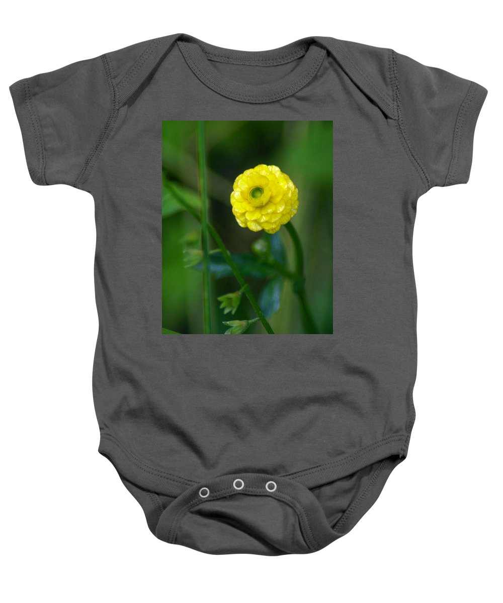 Flowers Baby Onesie featuring the photograph Gazing At The Morning Sun by Ben Upham III