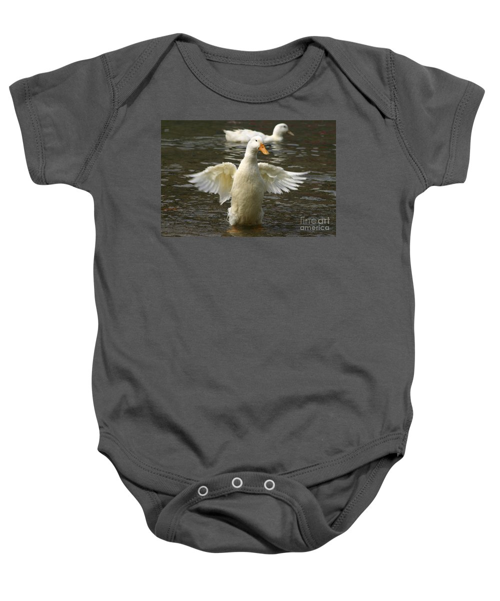 Ducks Baby Onesie featuring the photograph Geese In The Water by Danny Yanai