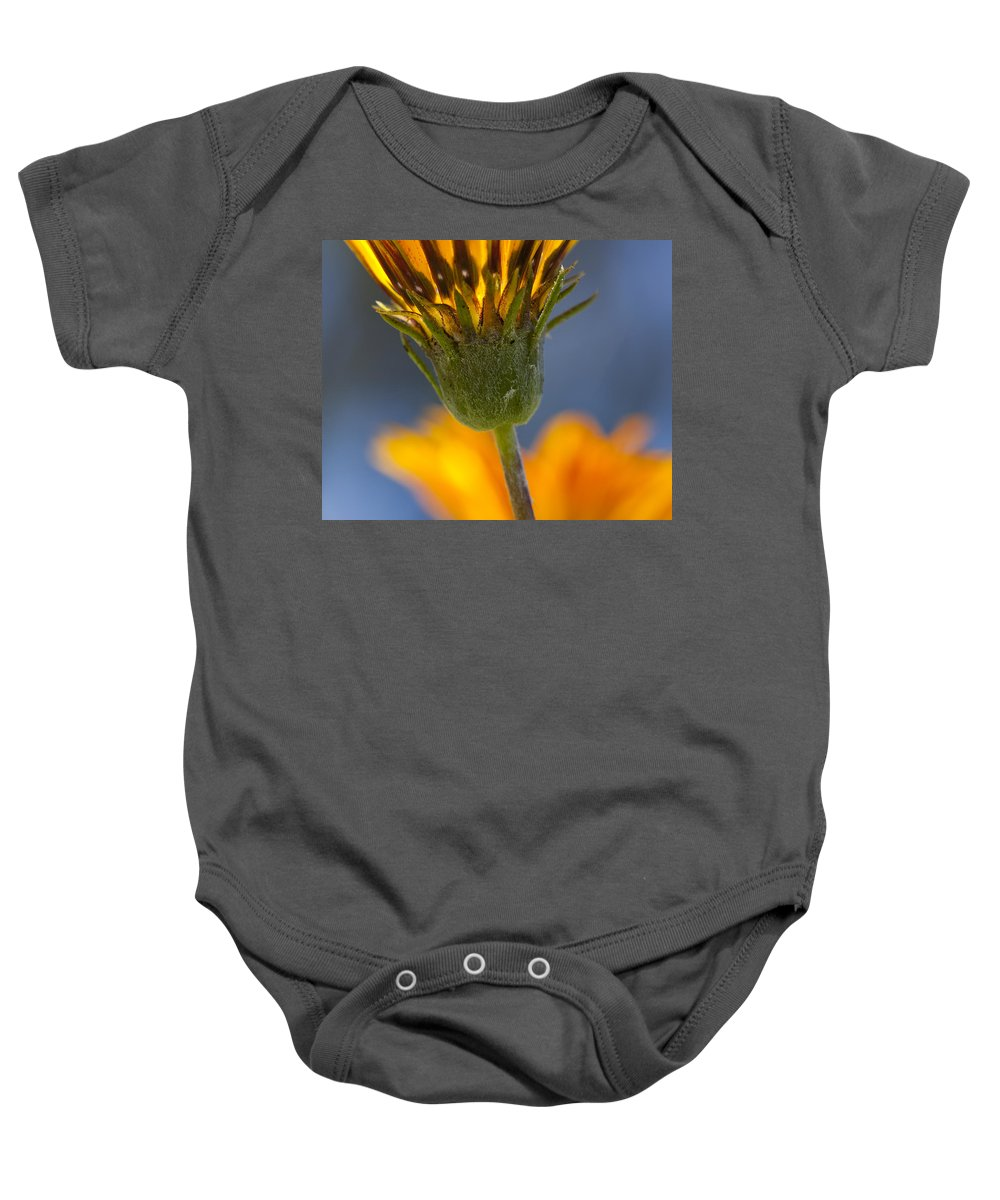 Flowers Baby Onesie featuring the photograph Gerbera Daisy by Kelley King