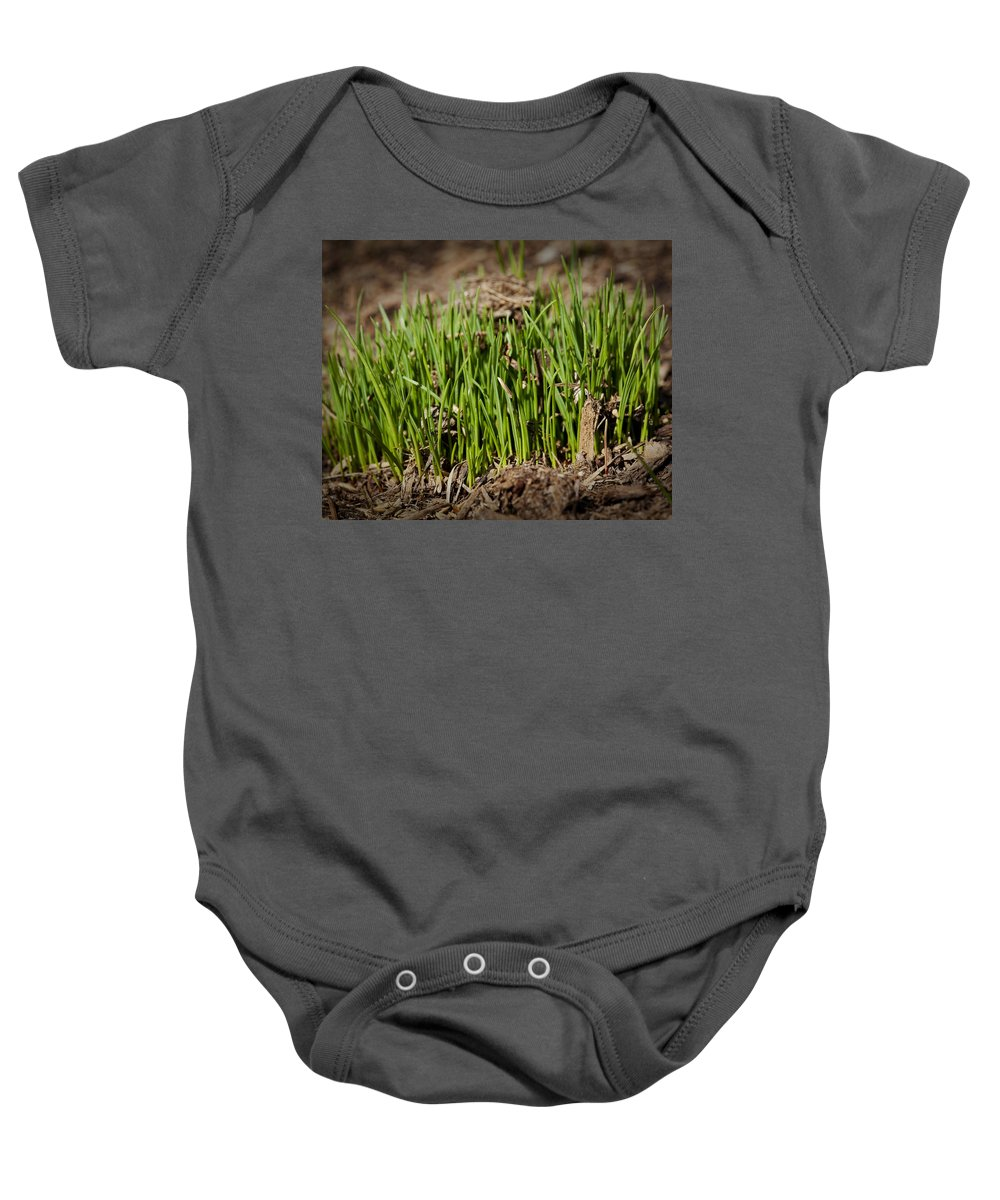 Grass Baby Onesie featuring the photograph Germination by Kelley King