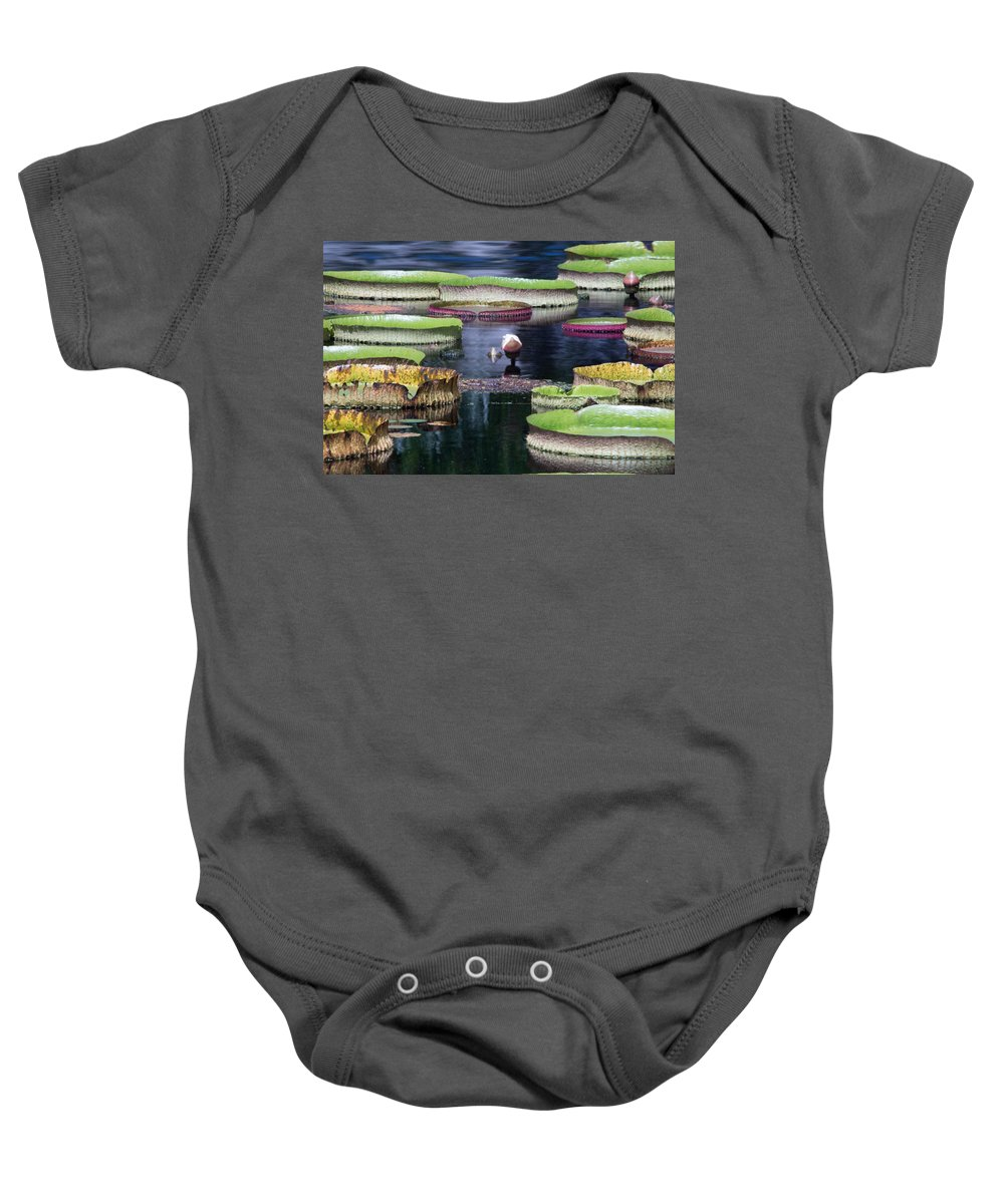 Lily Pad Baby Onesie featuring the photograph Giant Lily Pads by J Darrell Hutto