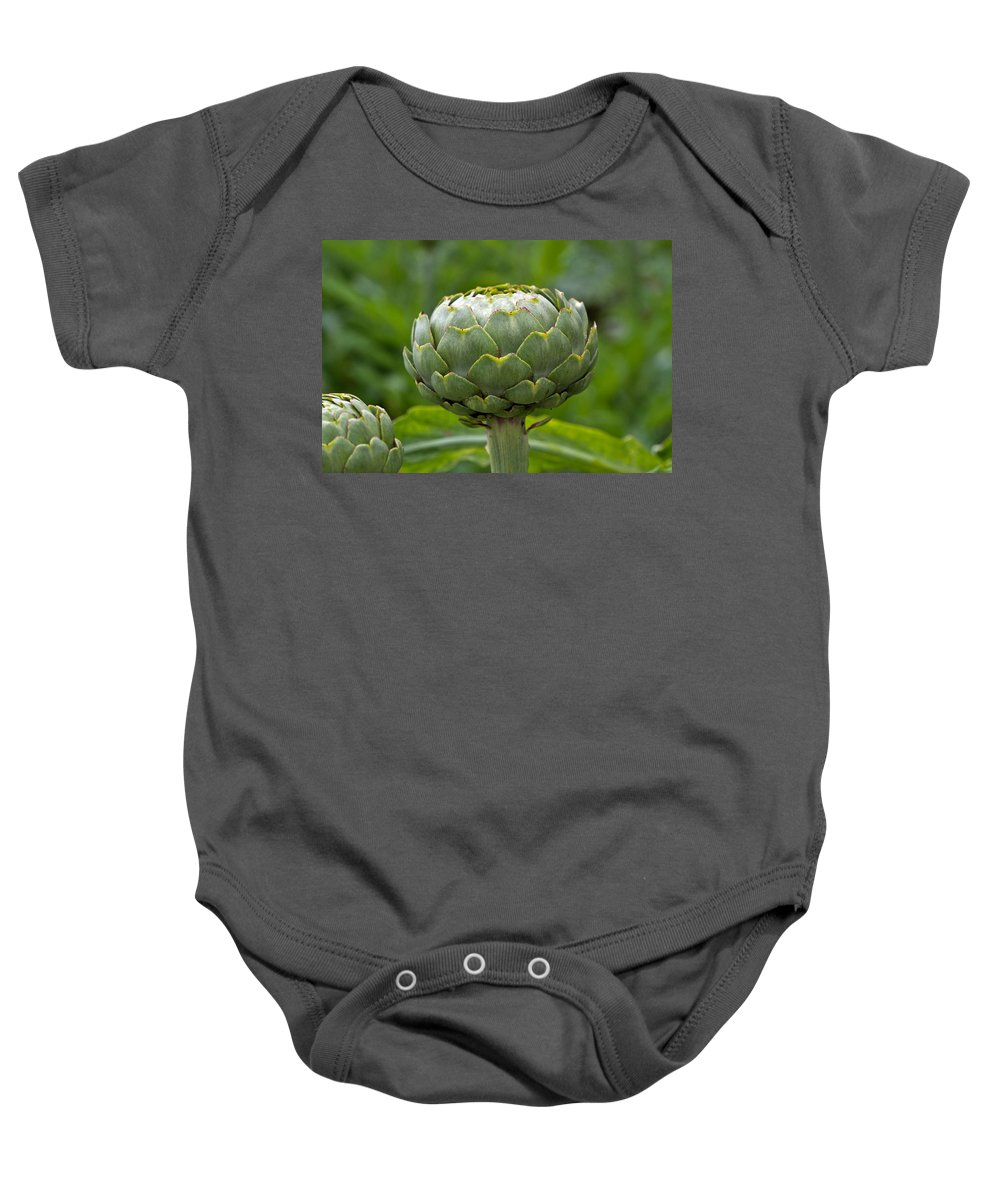 Vegetable Baby Onesie featuring the photograph Globe Artichoke by Louise Heusinkveld