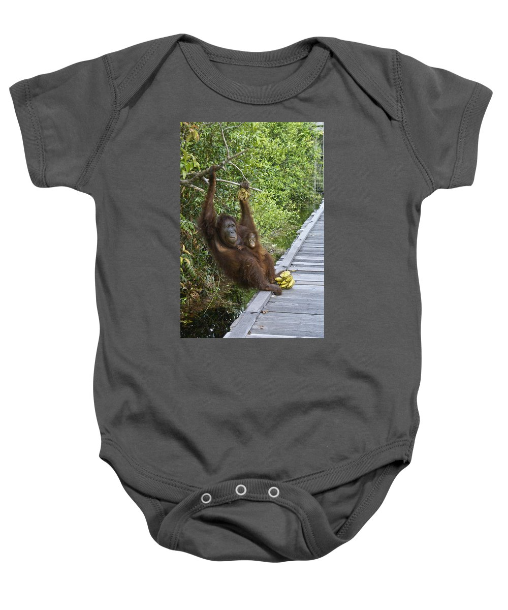 Asia Baby Onesie featuring the photograph Going Bananas by Michele Burgess