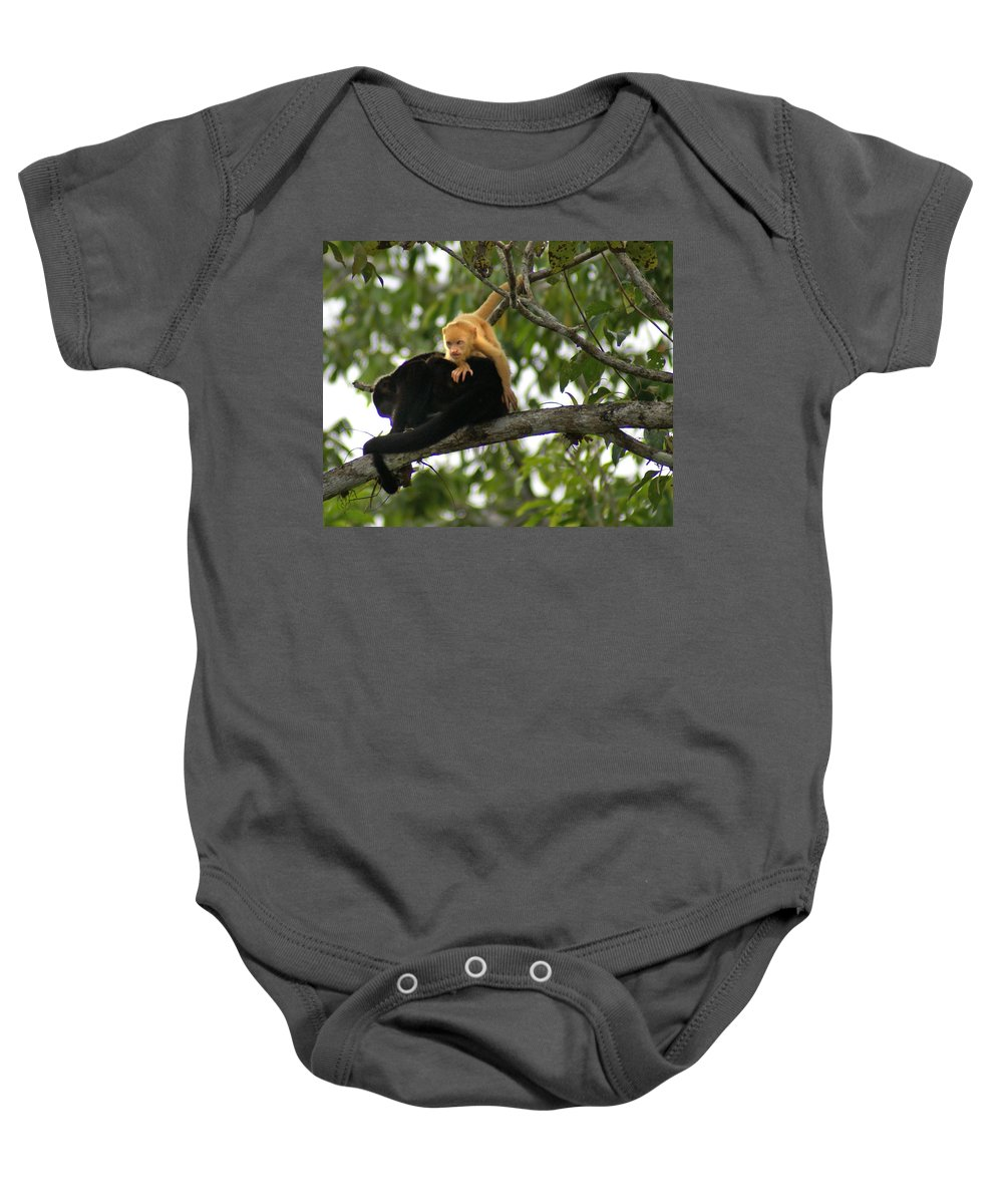 Monkey Baby Onesie featuring the photograph Golden Monkey by Heather Coen