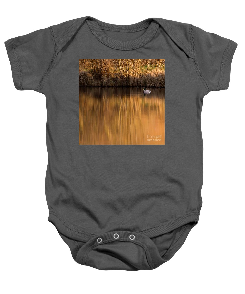 Gold Baby Onesie featuring the photograph Golden Sunset by Angel Ciesniarska
