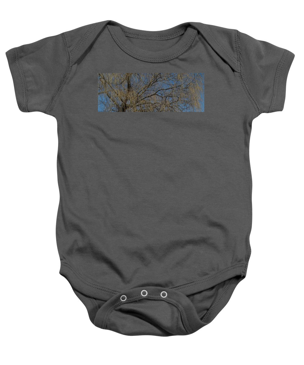 Weeping Willow Baby Onesie featuring the photograph Golden Treetop by Anne Cameron Cutri