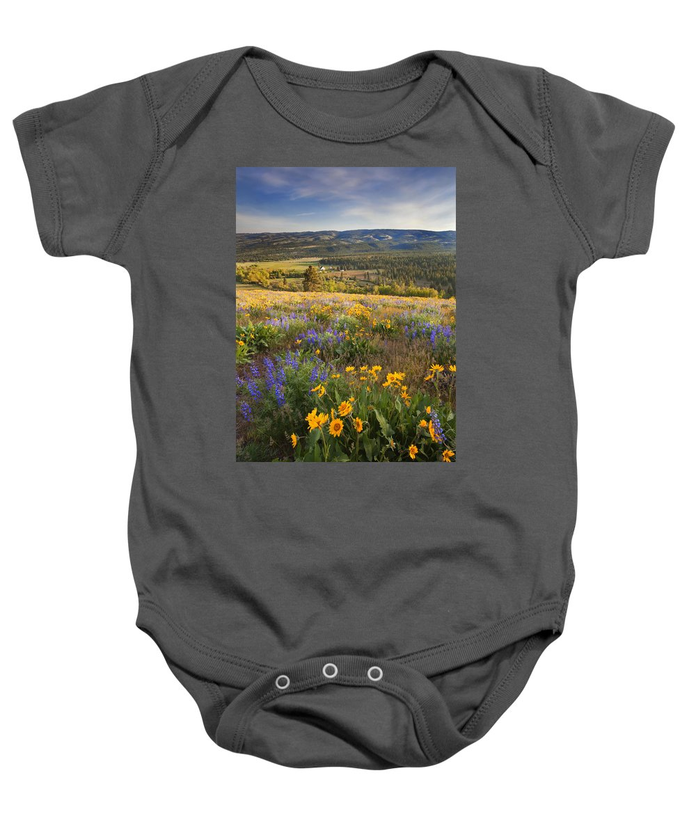 Wildflowers Baby Onesie featuring the photograph Golden Valley by Mike Dawson