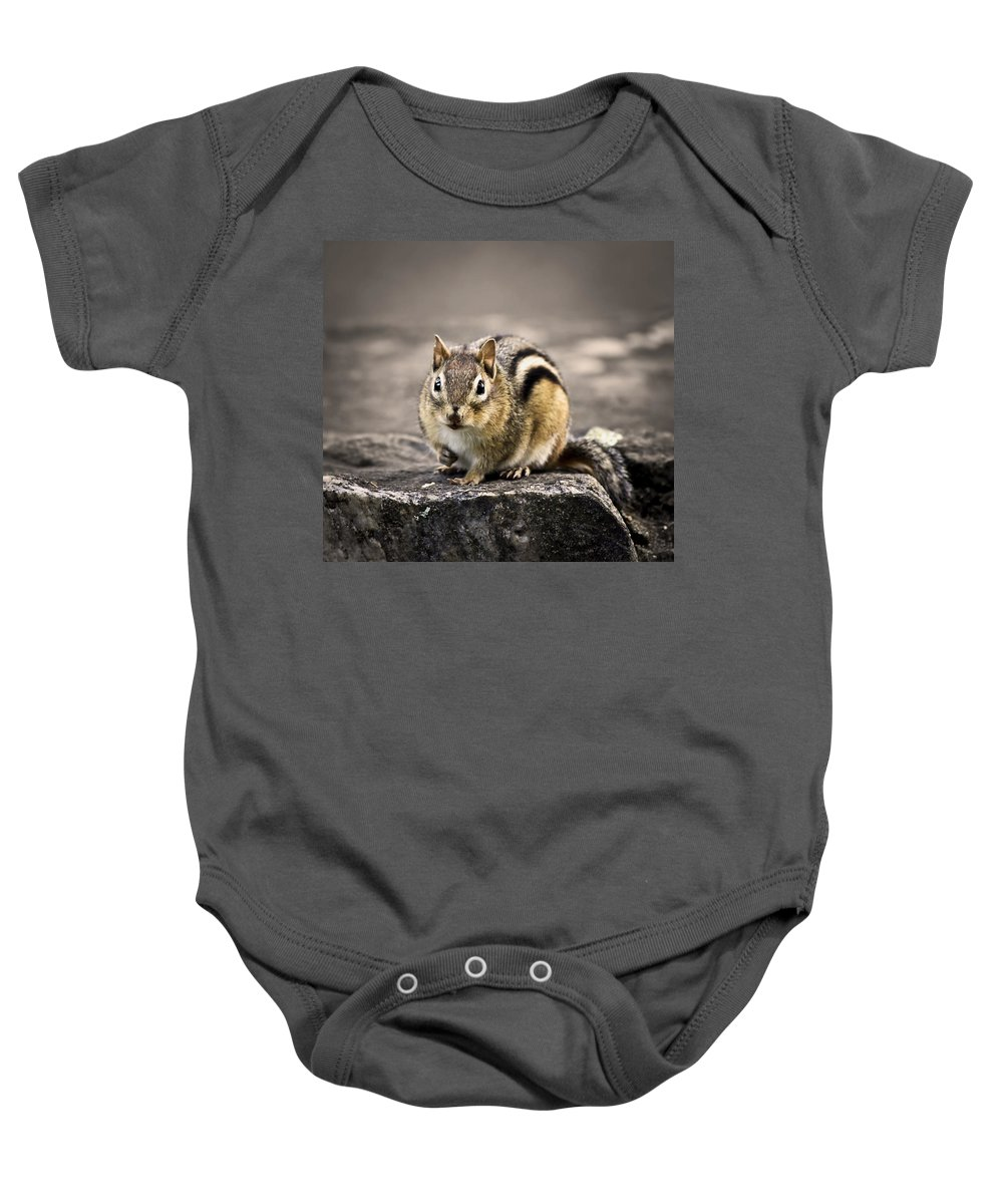 Animal Baby Onesie featuring the photograph Got Nuts by Evelina Kremsdorf