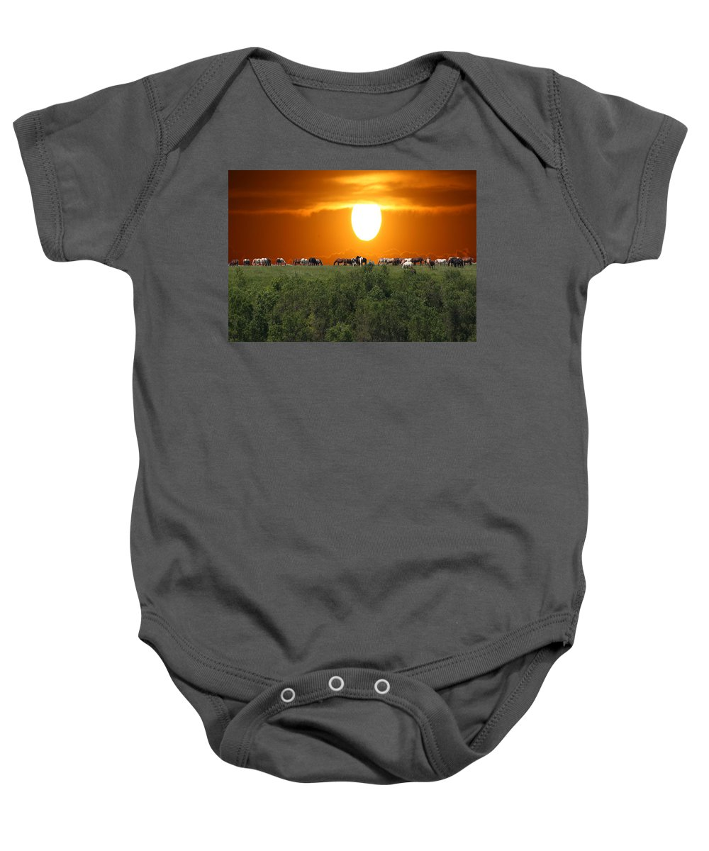 Horses Herd Sunset Grass Trees Nature Animals Scenery Sun Baby Onesie featuring the photograph Grazing by Andrea Lawrence