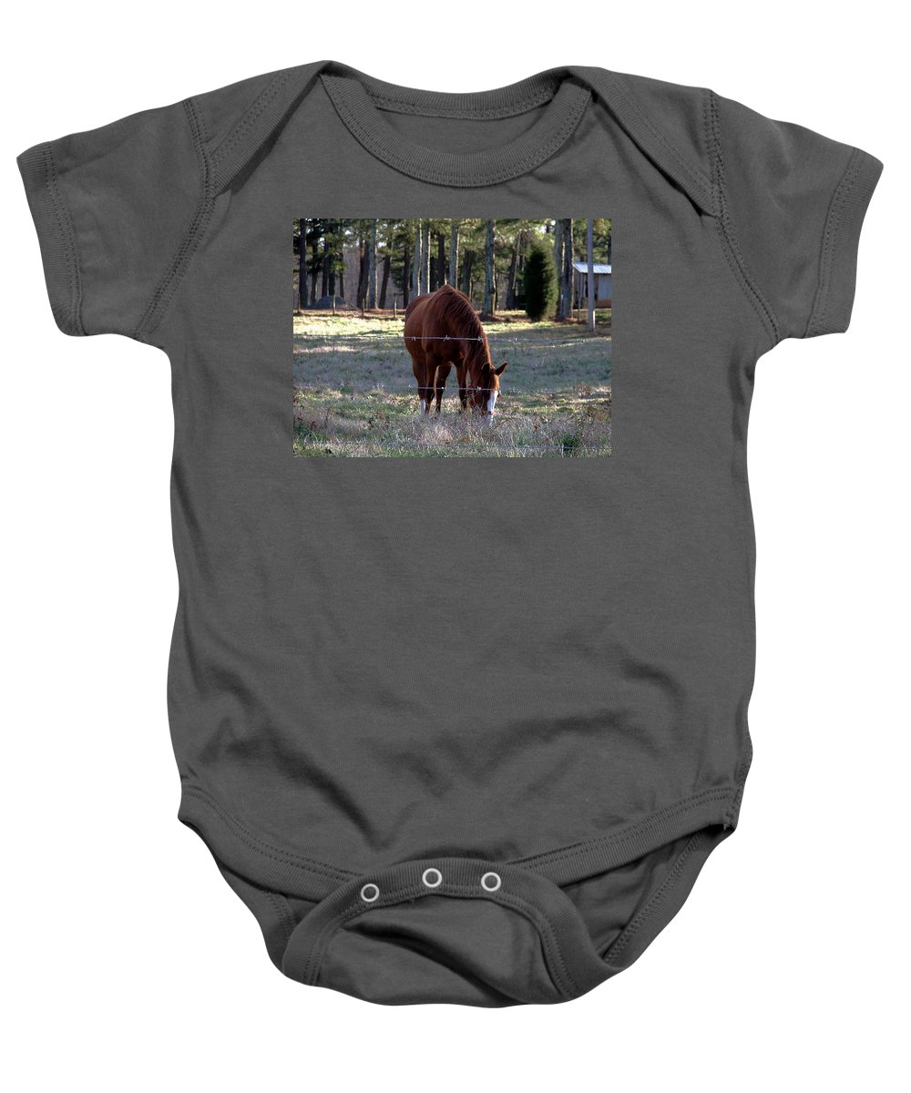 Horse Baby Onesie featuring the photograph Grazing by Robert Meanor