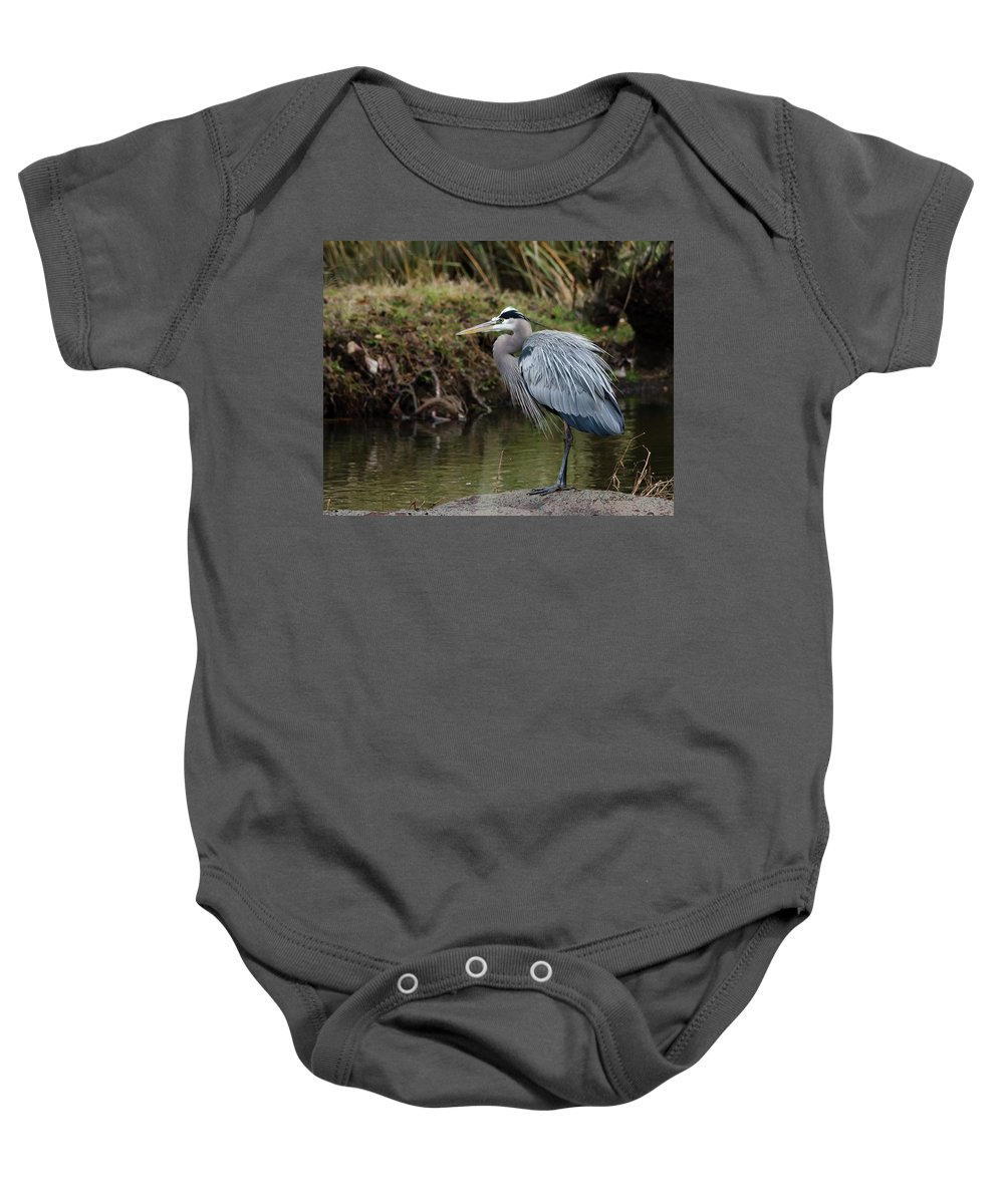 Hero Baby Onesie featuring the photograph Great Blue Heron On The Watch by George Randy Bass