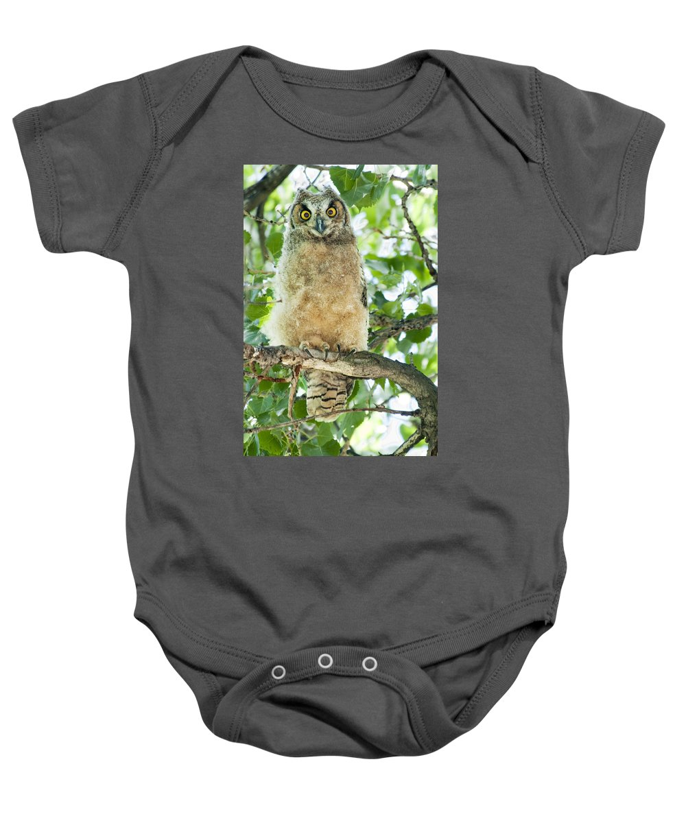 Owl Baby Onesie featuring the photograph Great Horned Owl by Gary Beeler
