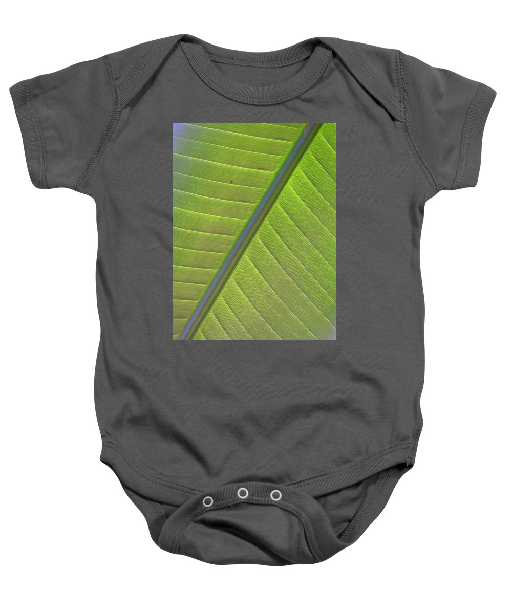Leaf Baby Onesie featuring the photograph Green And Purple Pattern by Laurie Paci