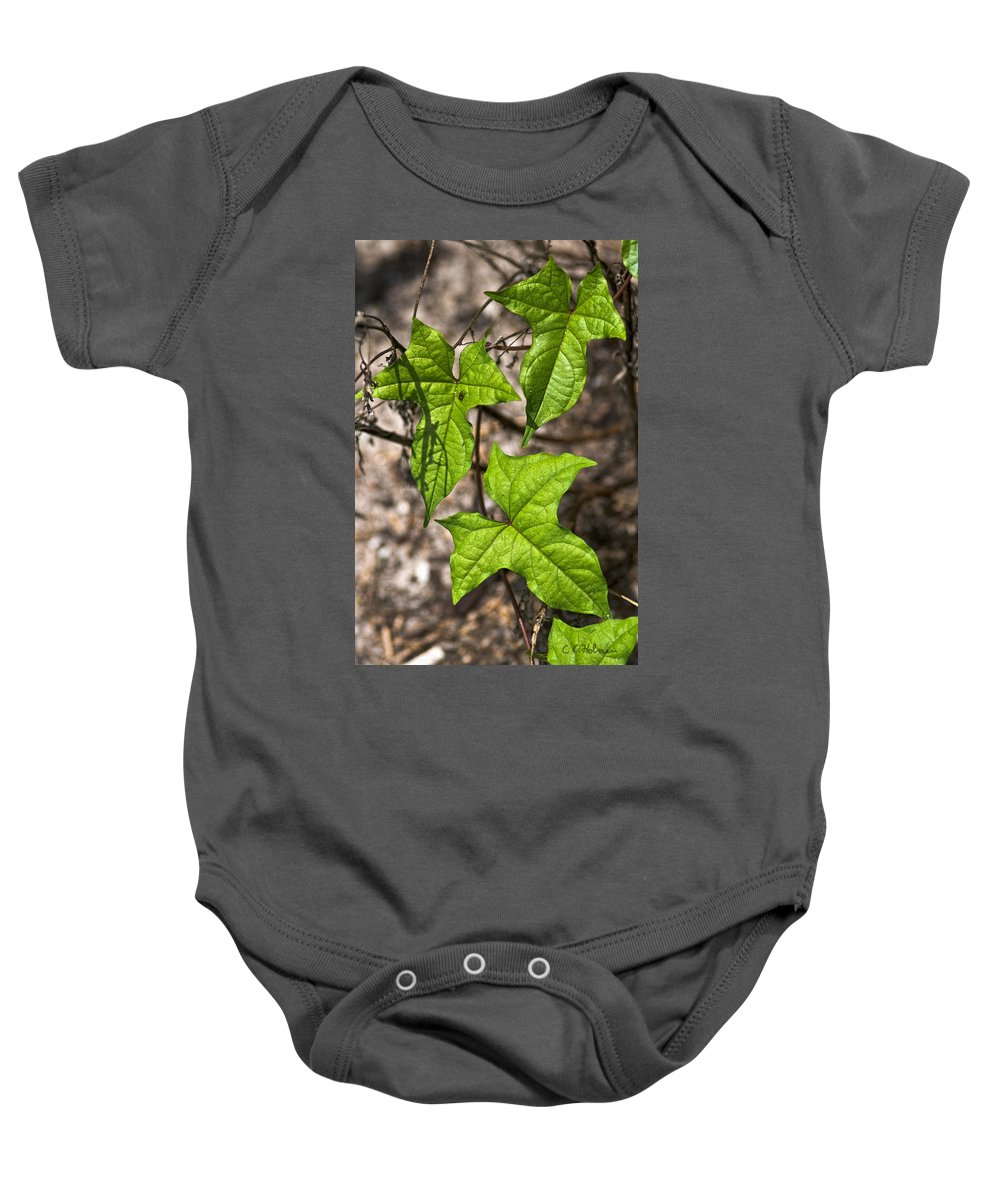Green Baby Onesie featuring the photograph Green Arrowheads by Christopher Holmes